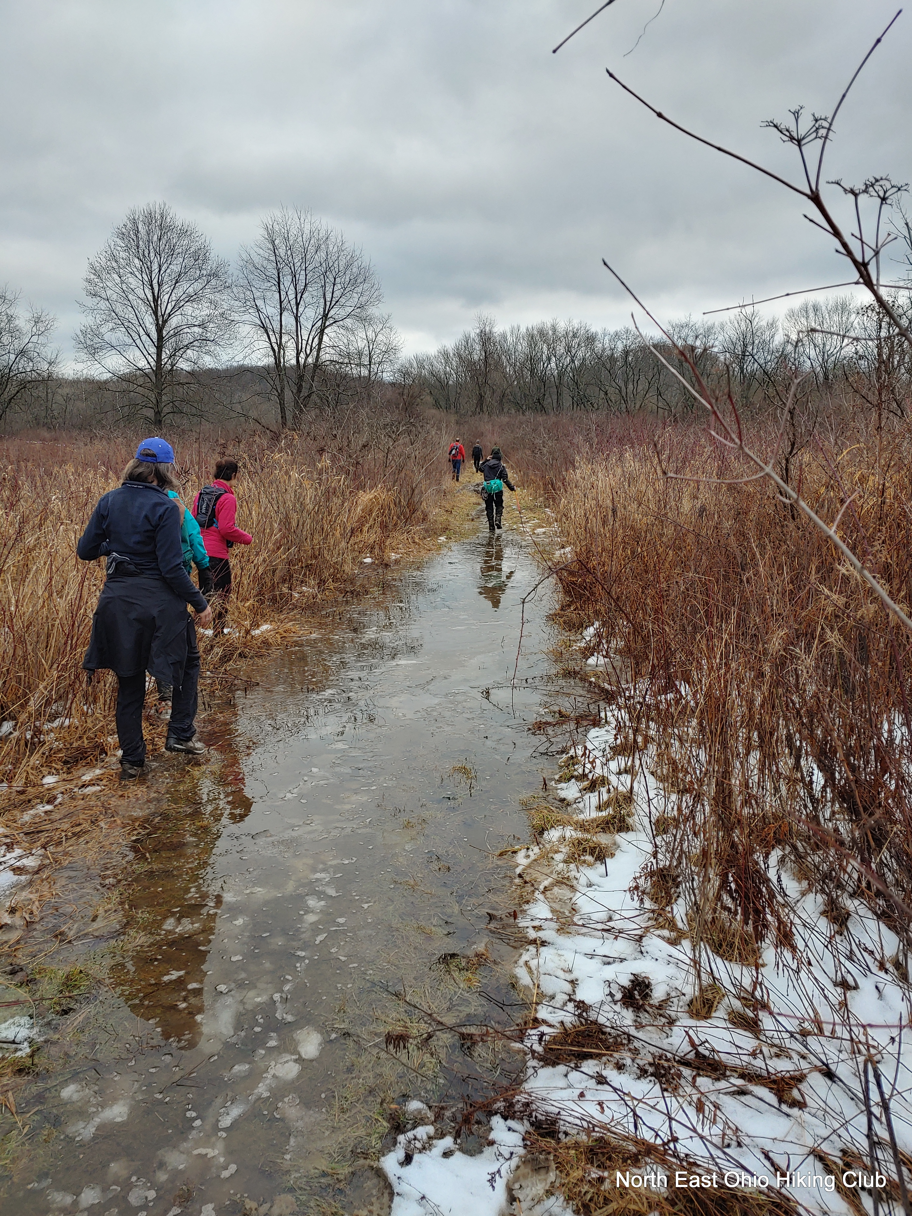 Northeast Ohio Hiking Clubs Offer More Than Just A Walk In The Woods Cleveland Com