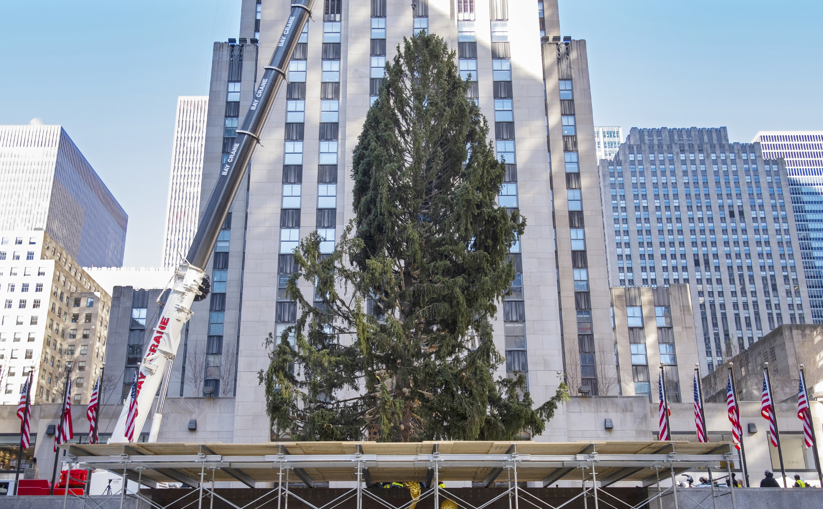 Rockefeller Christmas Tree 2021 Time Rockefeller Christmas Tree From Cny Gets Mocked And Compared To Charlie Brown Syracuse Com