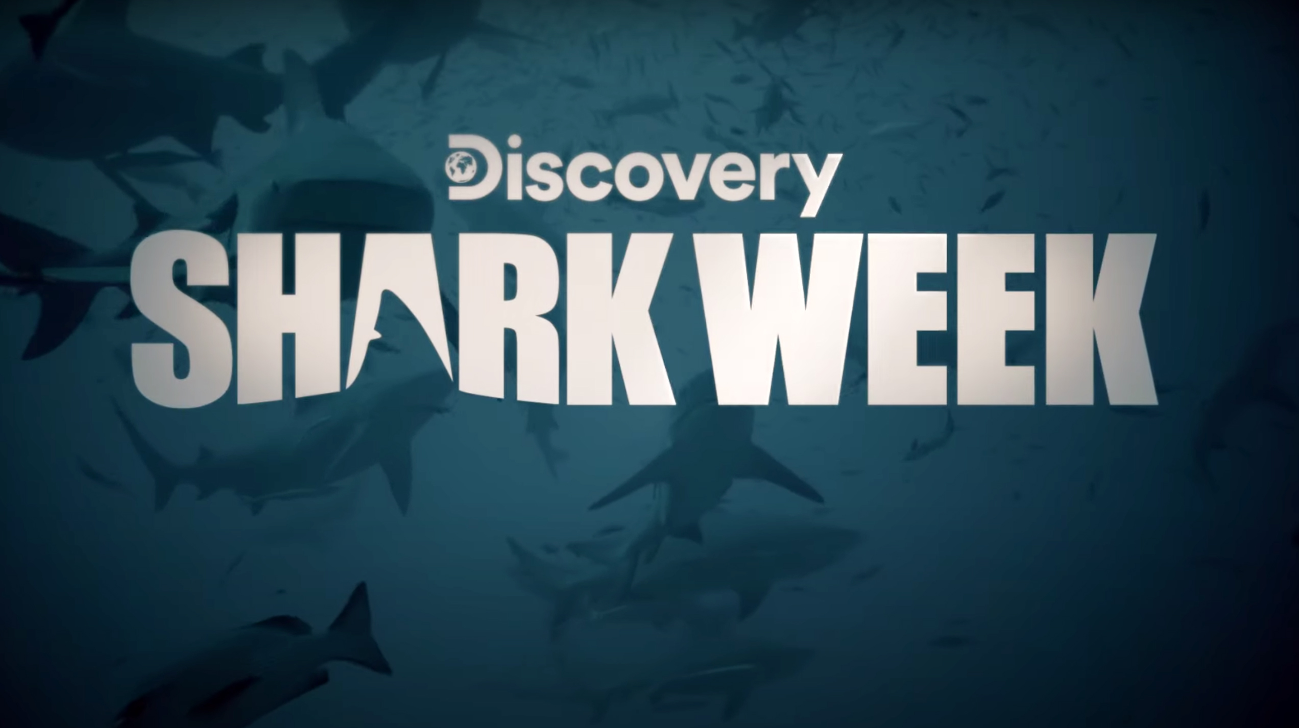 Shark Week 2020: How to watch, live stream, schedule, dates, times ...
