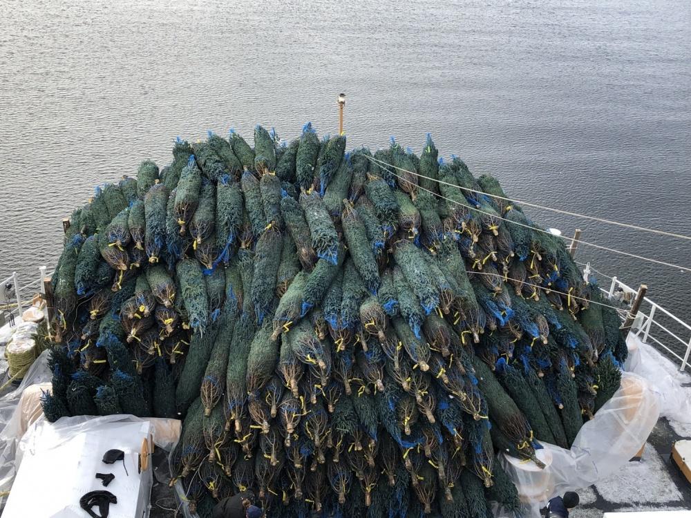 U.S. Coast Guard cutter is carrying 'Christmas Tree Ship' load