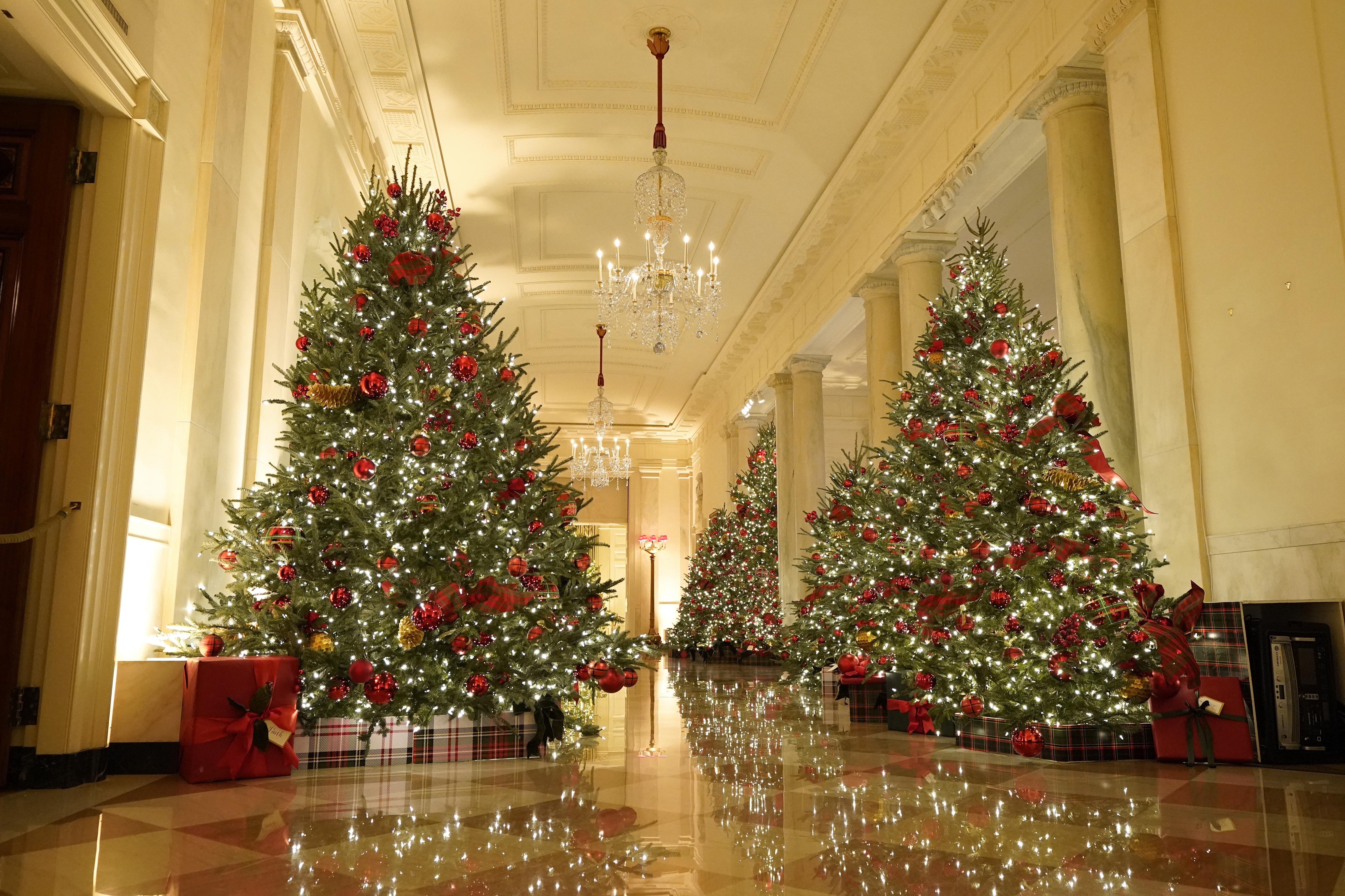 Whitehouse Christmas Decor 2021 Melania Trump Unveils White House Christmas Decorations With America The Beautiful Theme Mlive Com