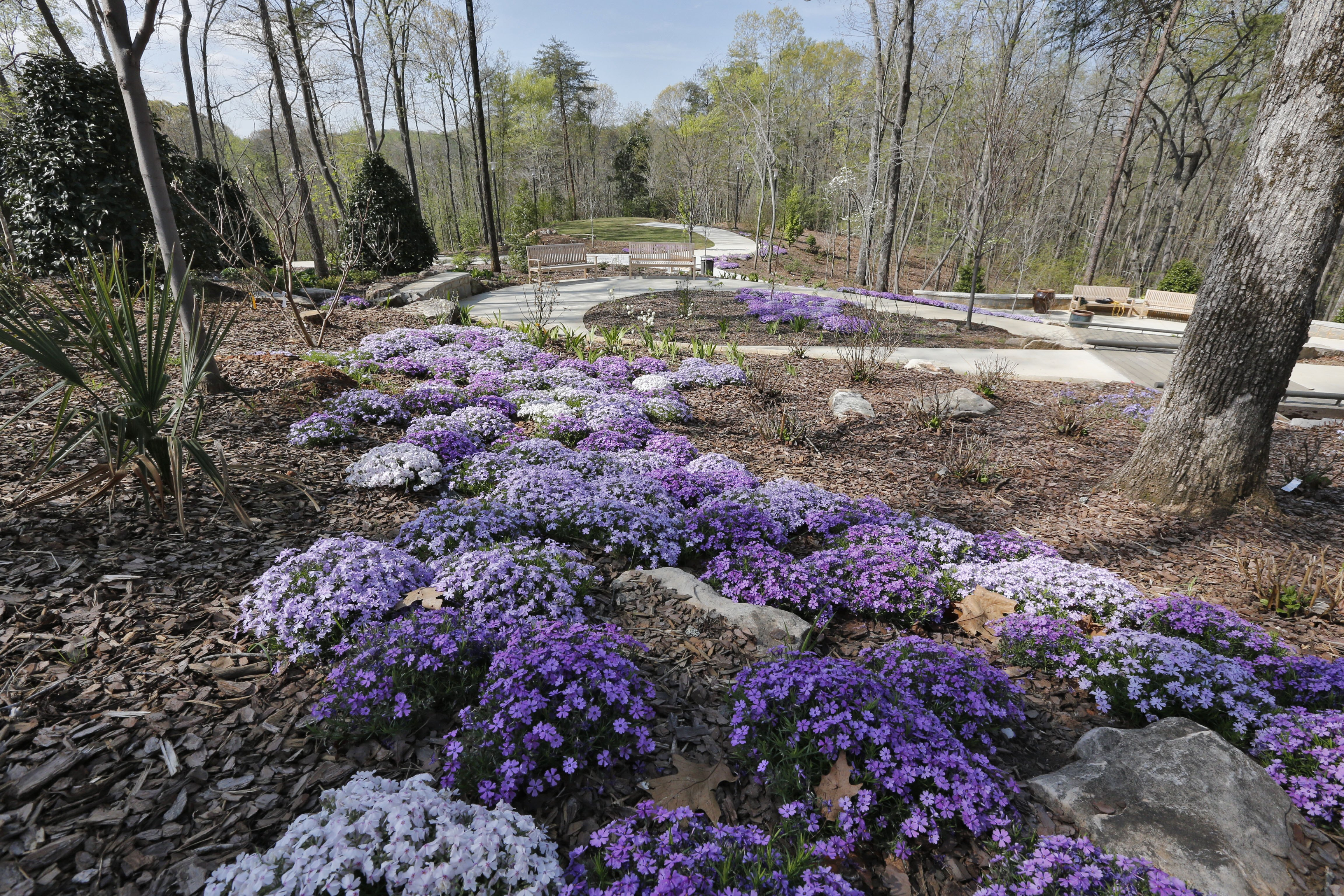 Gainesville Botanical Garden Brings The Green