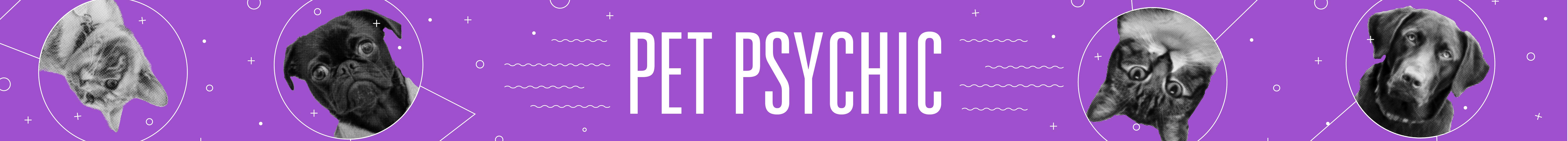 Pet Psychic Banner