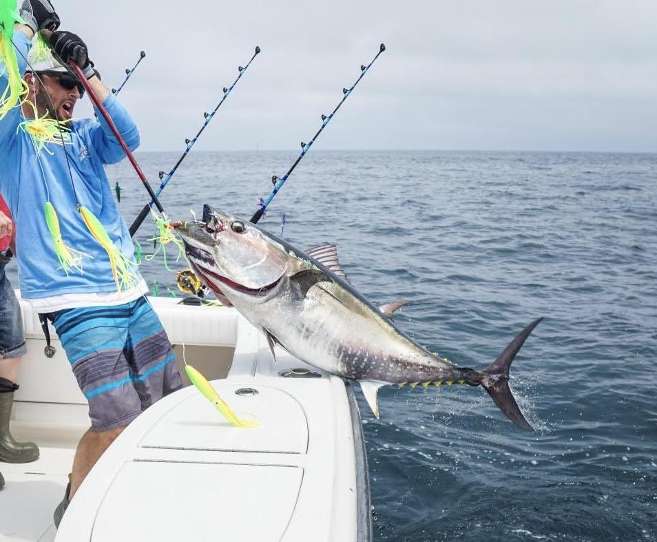 Marlin and Dolphin High Speed  Spreader Bar for Tuna