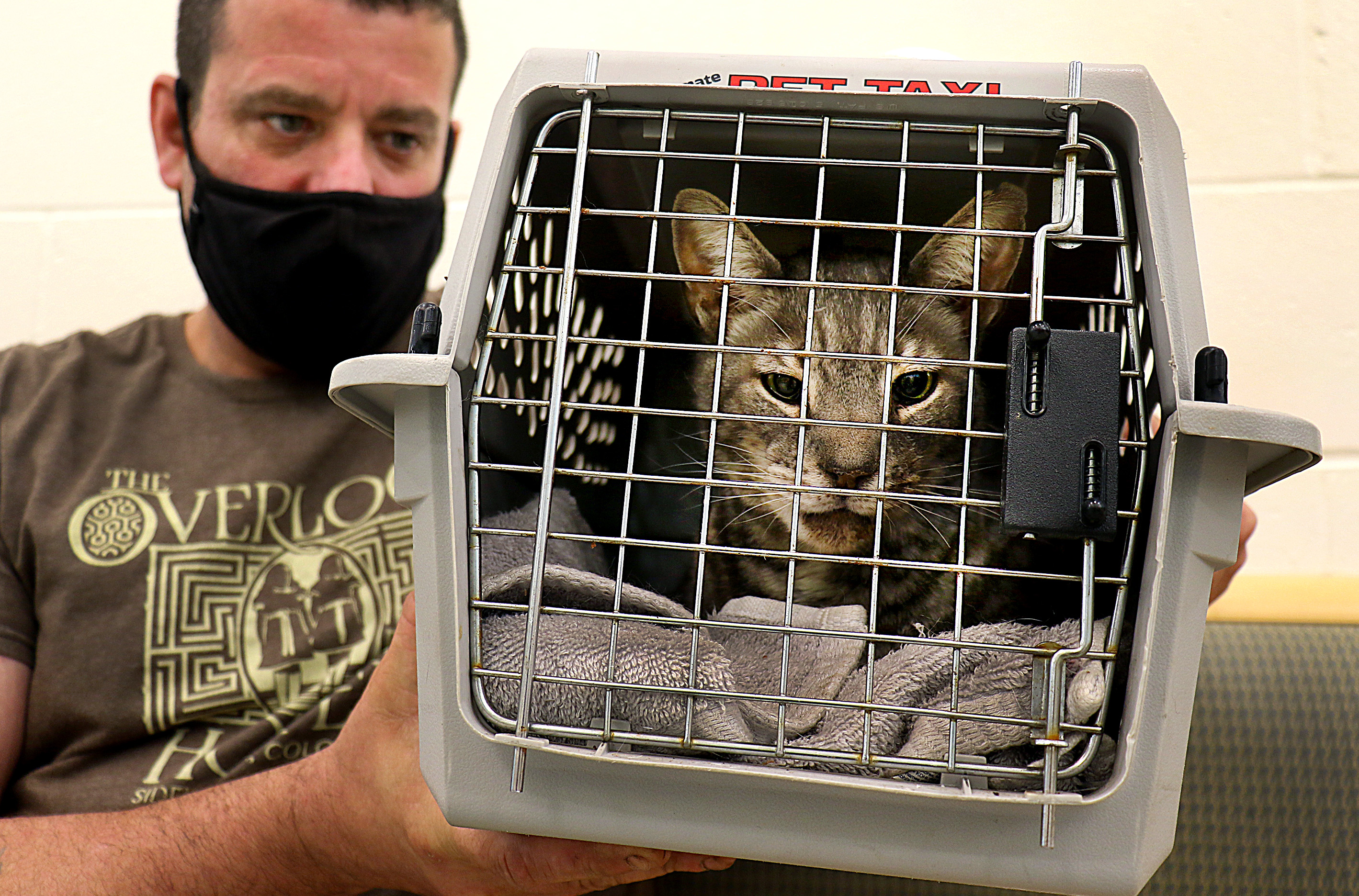 Carl Rossi waited two hours in Angell's waiting area to have his cat, Max, checked out after Max fled for five days and came back with a possibly broken jaw.