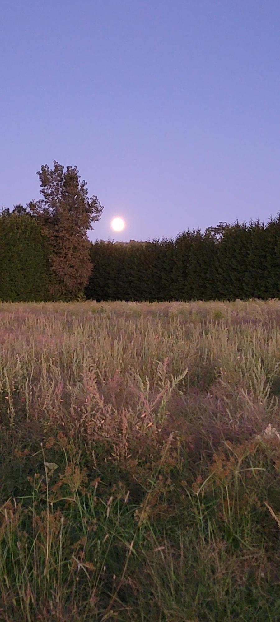 Moonrise over Lookout Farm 19. september 2021.