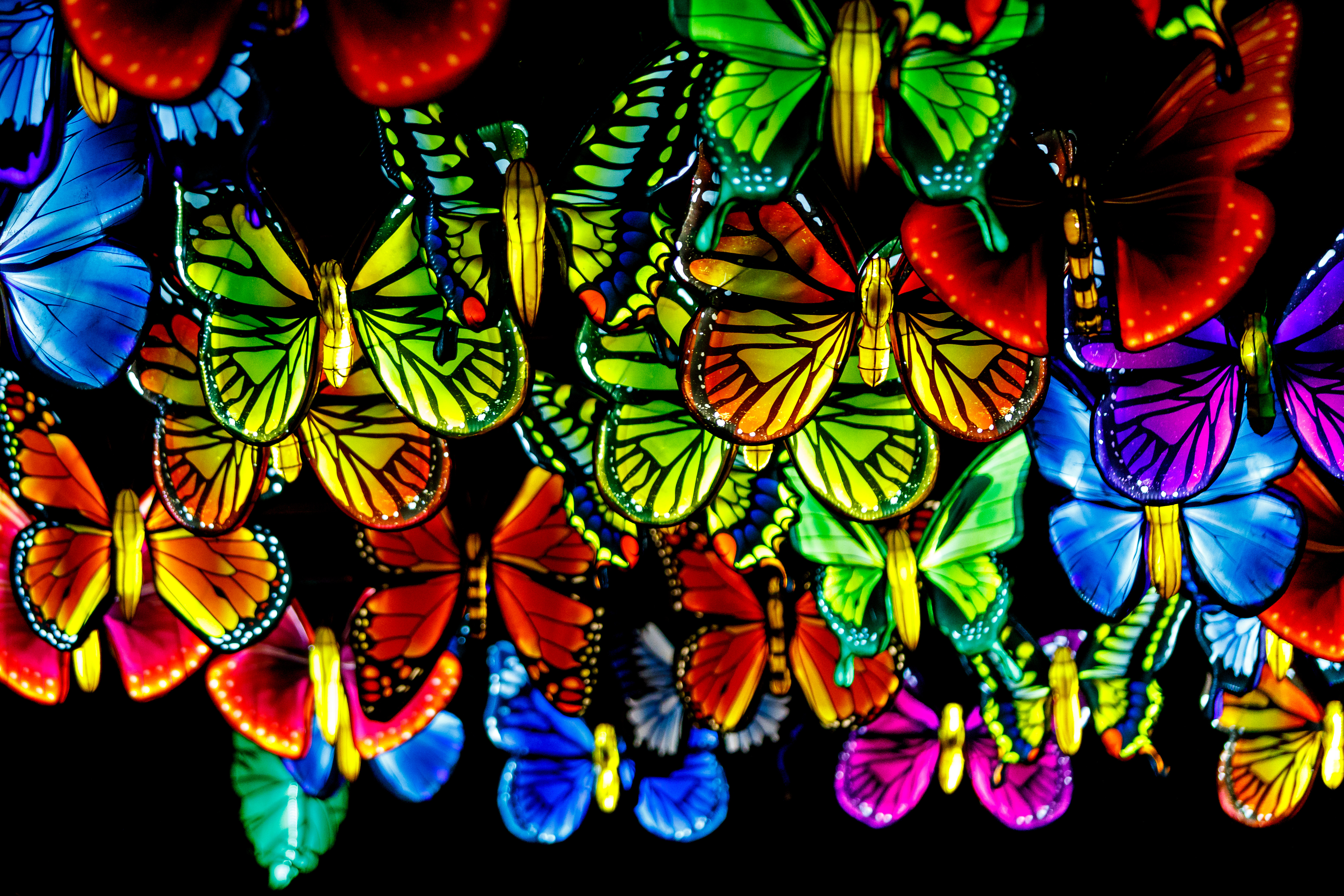 Halloween 2020 Franklin Park Ma A dazzling lantern display opens at the Franklin Park Zoo   The