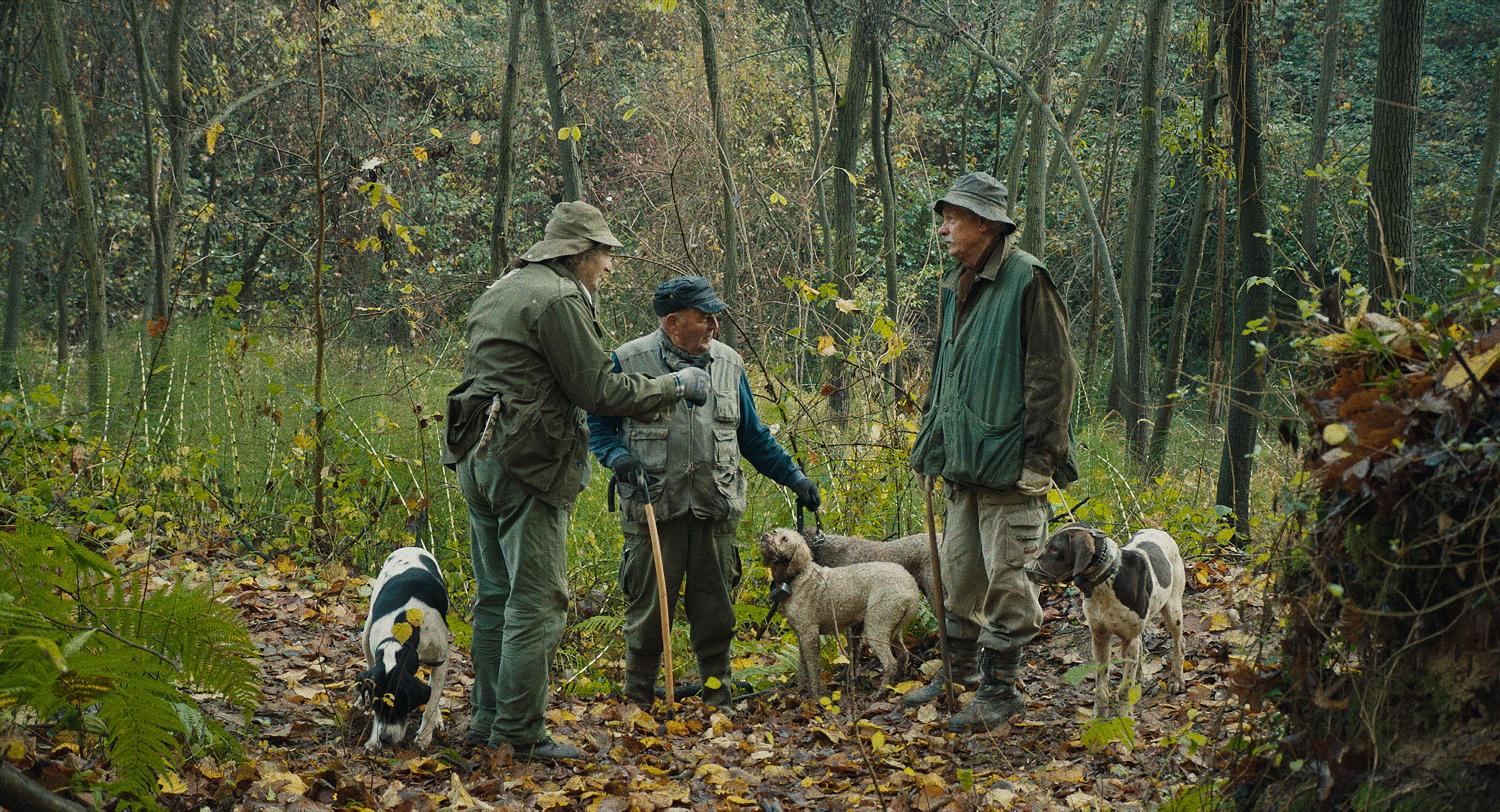 "A scene from ""The Truffle Hunters."""