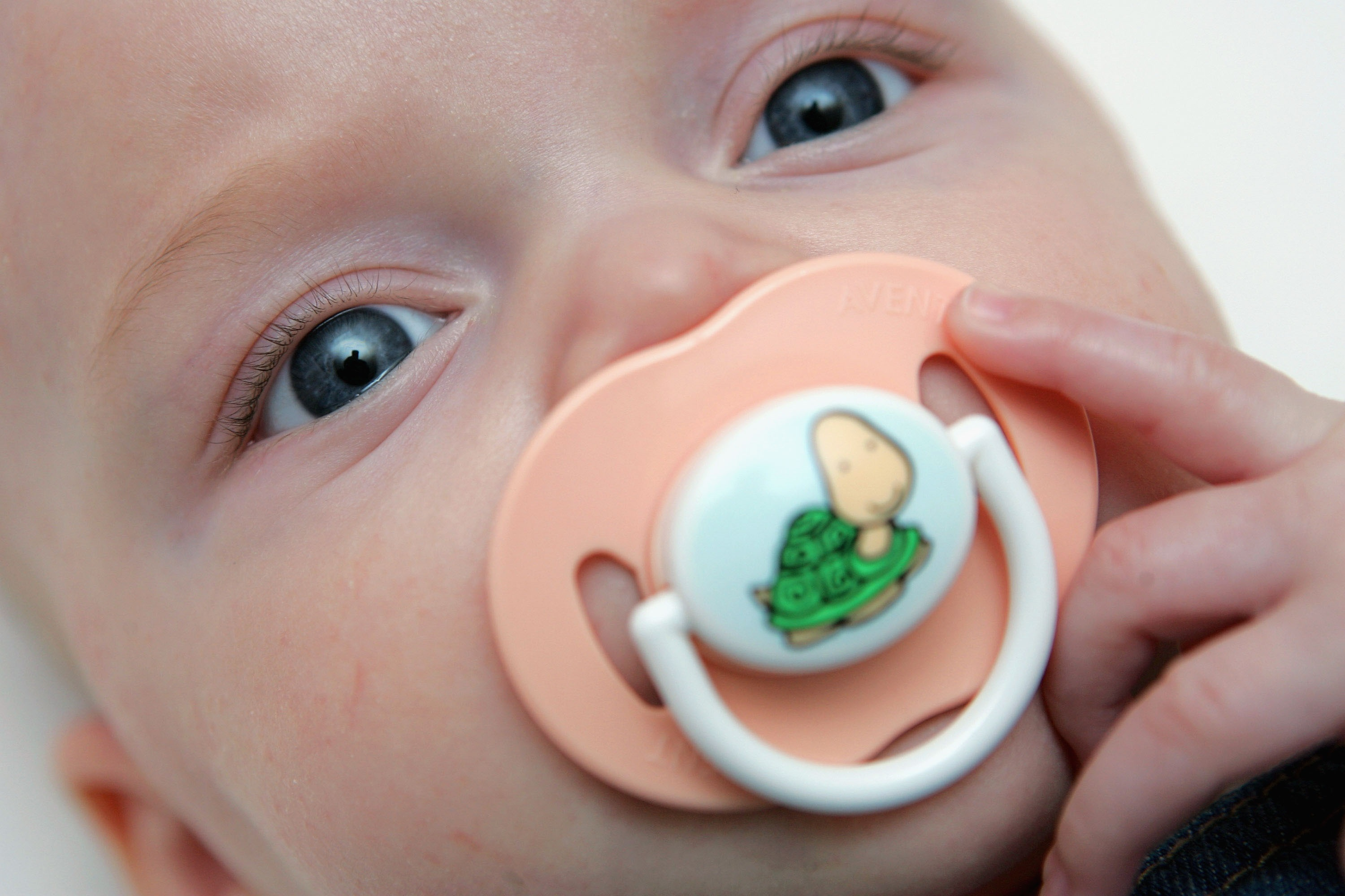 Missing pacifiers discovered in dog's stomach - 102.3 KRMG