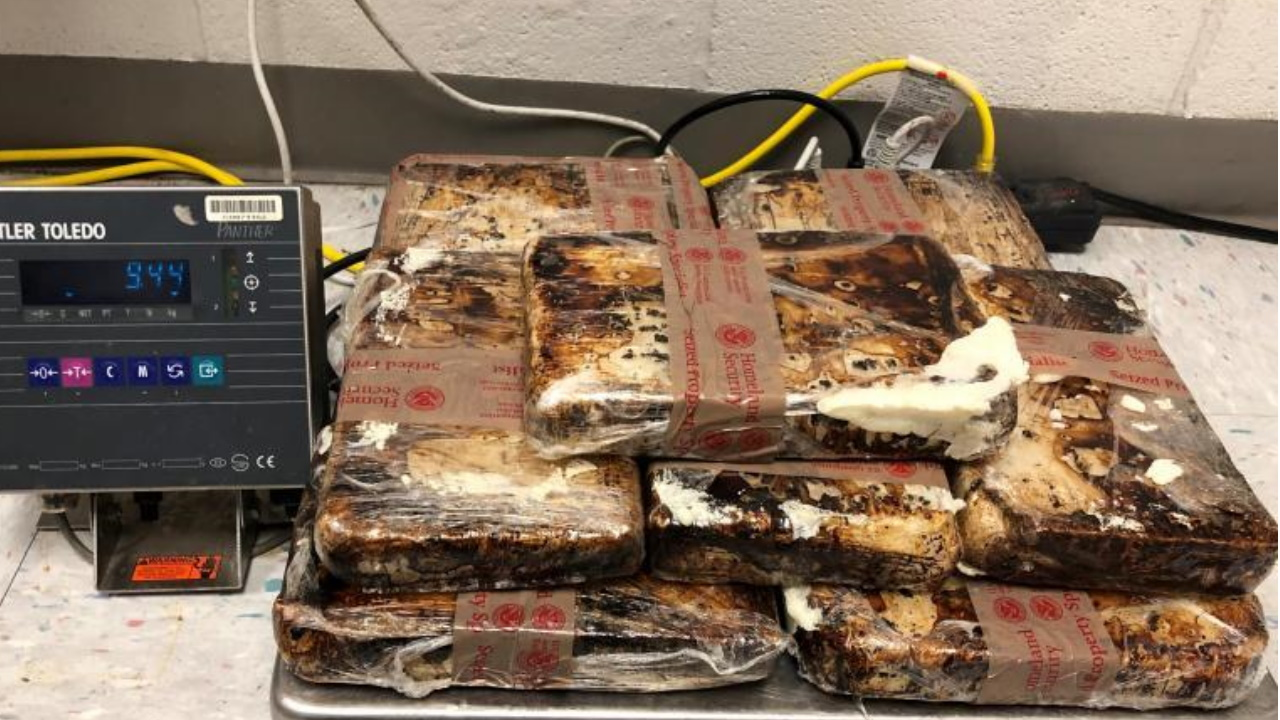 Customs officers seize drugs worth more than $500K