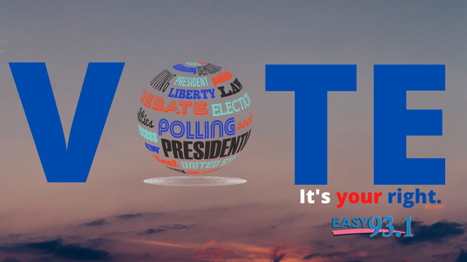 Here's How to Vote in the 2020 Elections!
