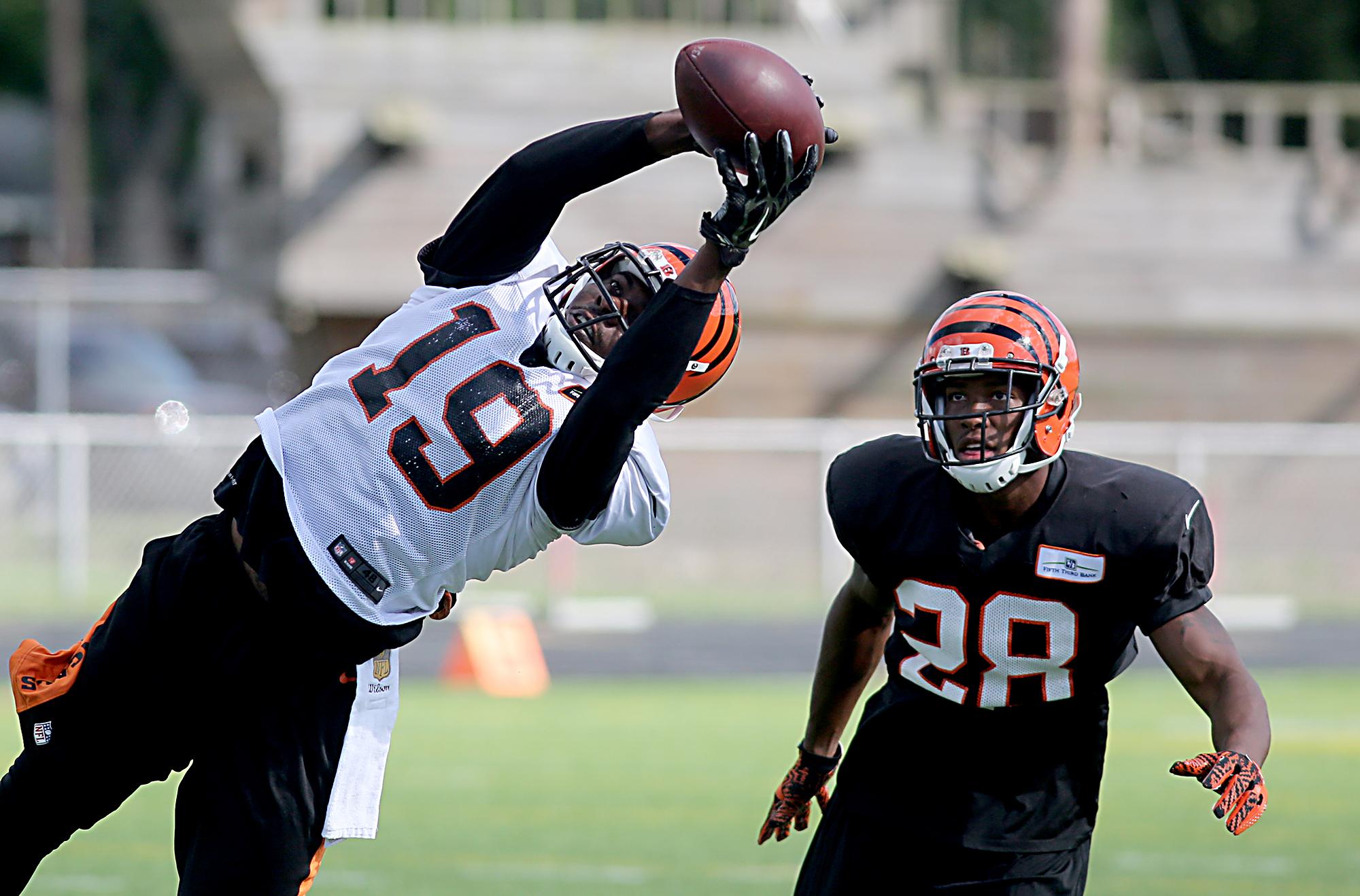 Cincinnati Bengals cut Brandon Tate in reducing roster to 75