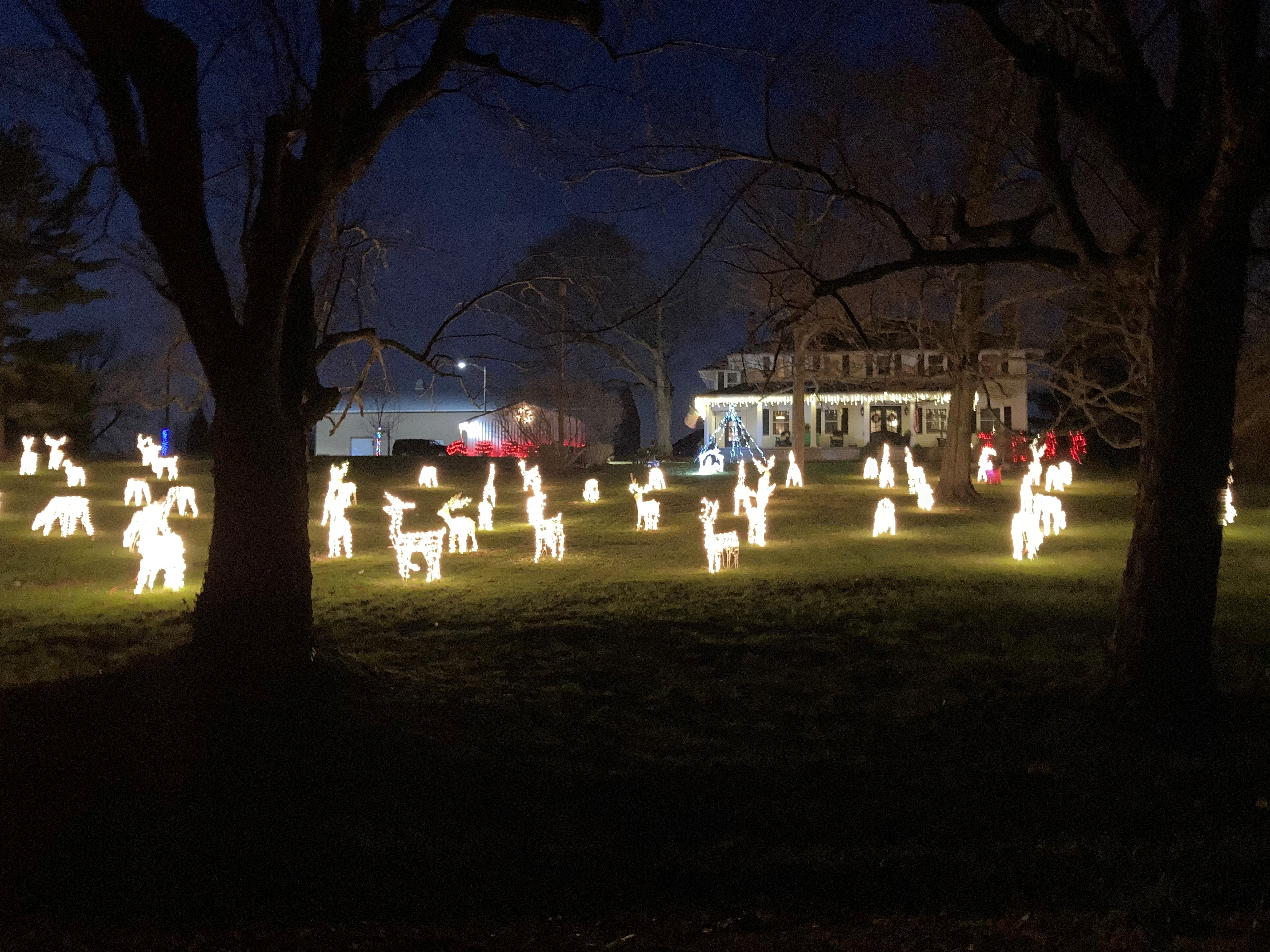 City Of Warren Christmas Tree Lighting 2021 Warren County Reindeer House Tradition Carried On By New Owners