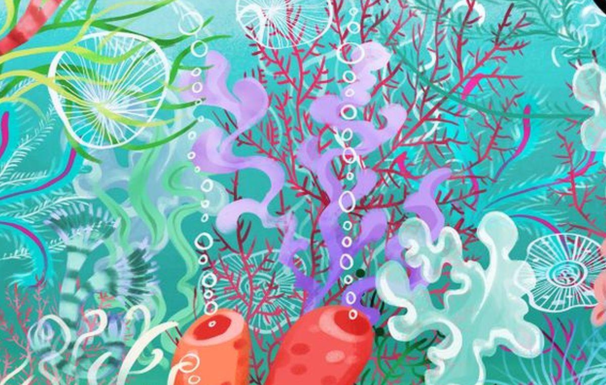 Encuentra la medusa feliz oculta en el reto viral de las algas imposible de resolver [FOTO]