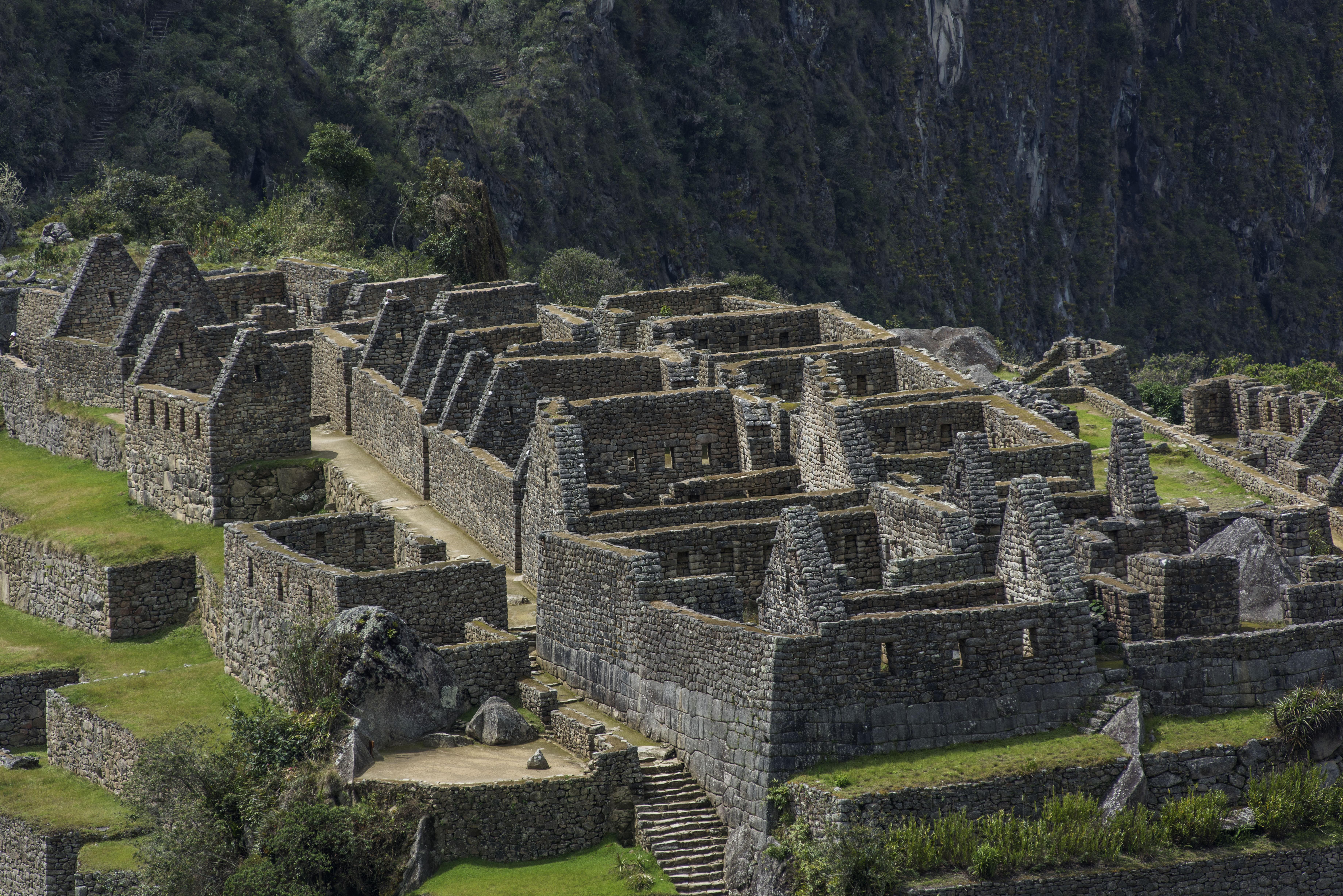 Machu Picchu: así está la majestuosa ciudadela inca, 7 meses después de su cierre | FOTOS