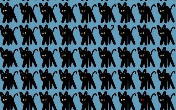 Evita la 'mala suerte': ¿cuáles son los gatos negros diferentes del reto viral? [FOTOS]