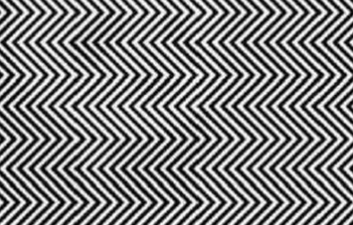 Reto viral del momento: ¿logras ver al panda en esta ilusión óptica viral que el 99% falla? [FOTO]