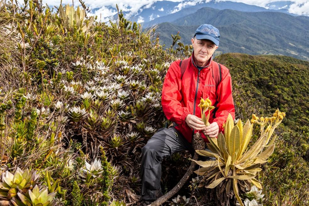 Según Fernando Álzate, biólogo de la Universidad de Antioquia y lider del estudio, existen apenas entre 300 y 400 ejemplares de la nueva especie.