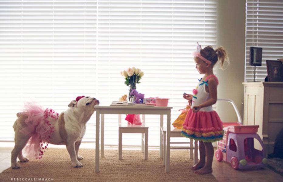 Niña y bulldog construyen una tierna relación de hermanas   EL ESPECTADOR