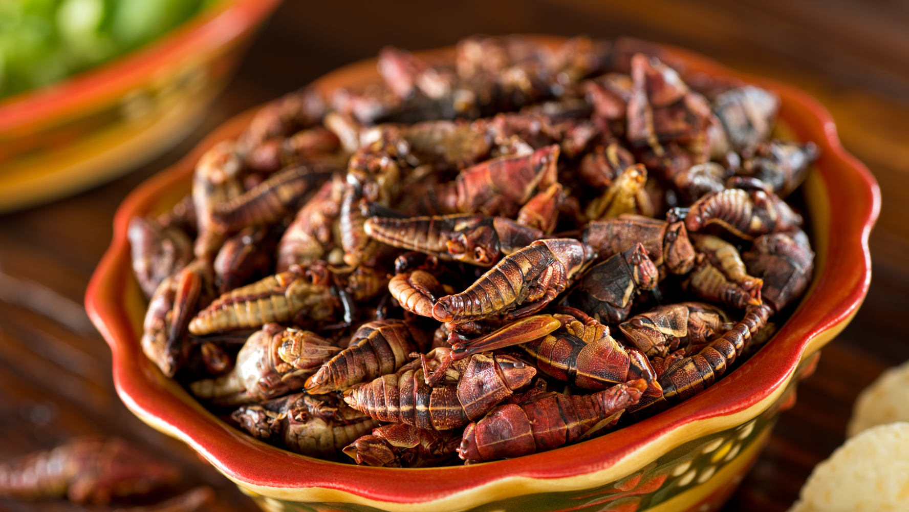 Chapulines, escamoles, huitlacoche y otros alimentos prehispánicos que  siguen en la cocina mexicana – El Financiero