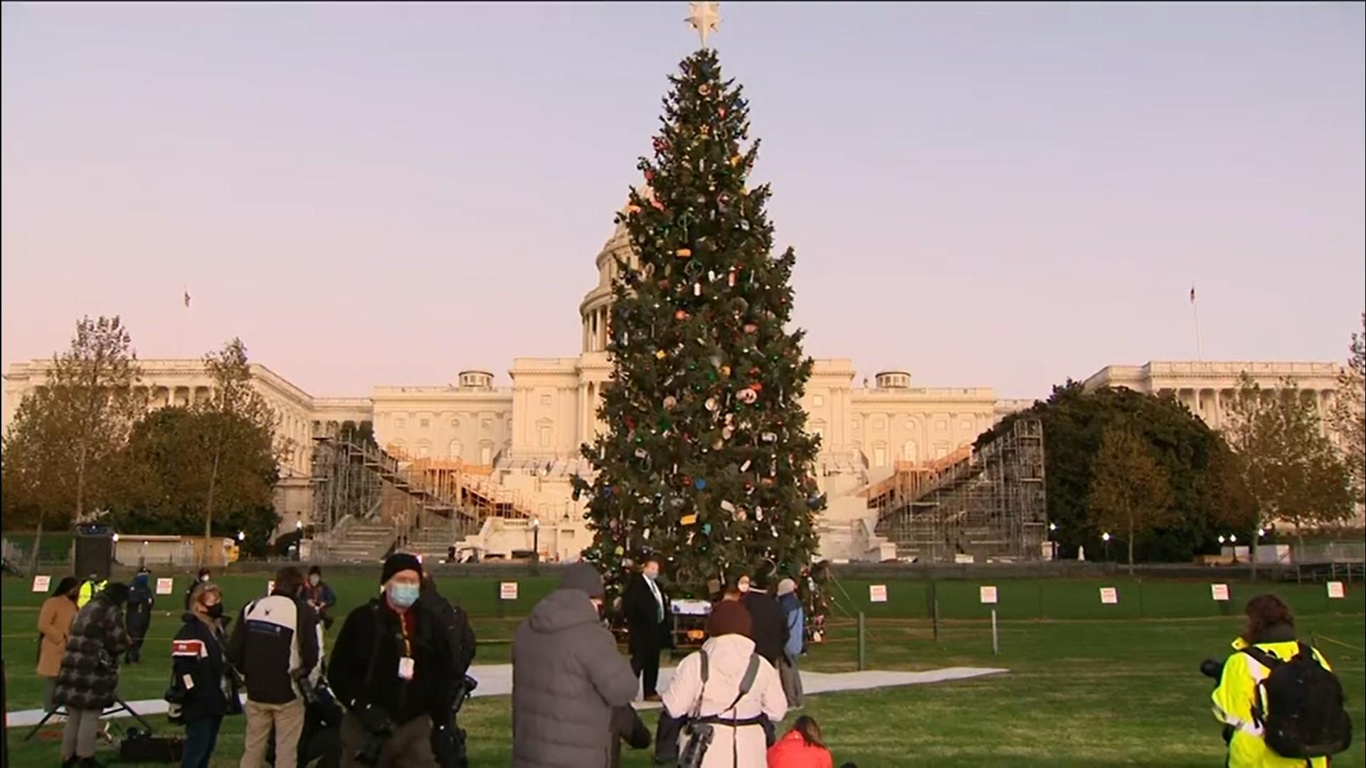 Capitol Christmas Tree Lighting Ceremony 2021 Watch Us Capitol Christmas Tree Lighting Ceremony
