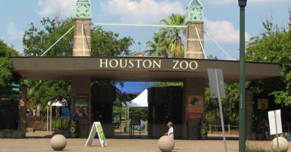 Houston Zoo closed due to power outage; What to do if you have reservations