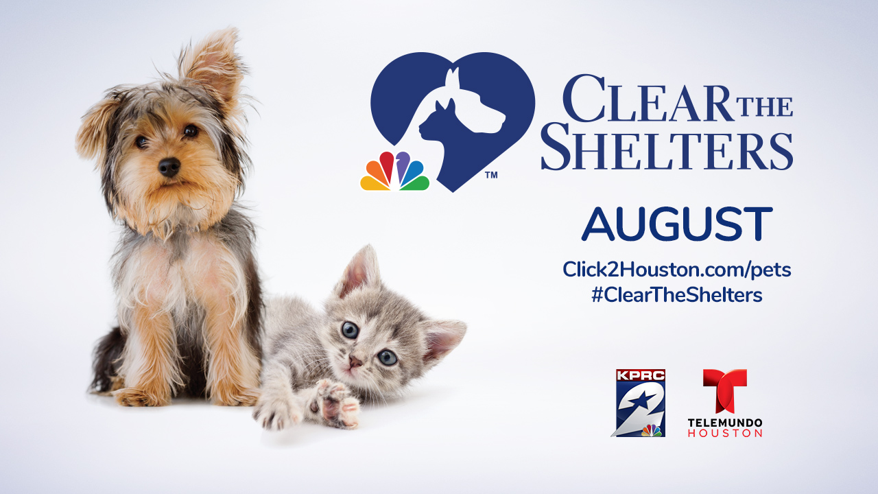 Looking To Expand Your Family With A Rescue Pet Help Kprc 2 Clear The Shelters This August