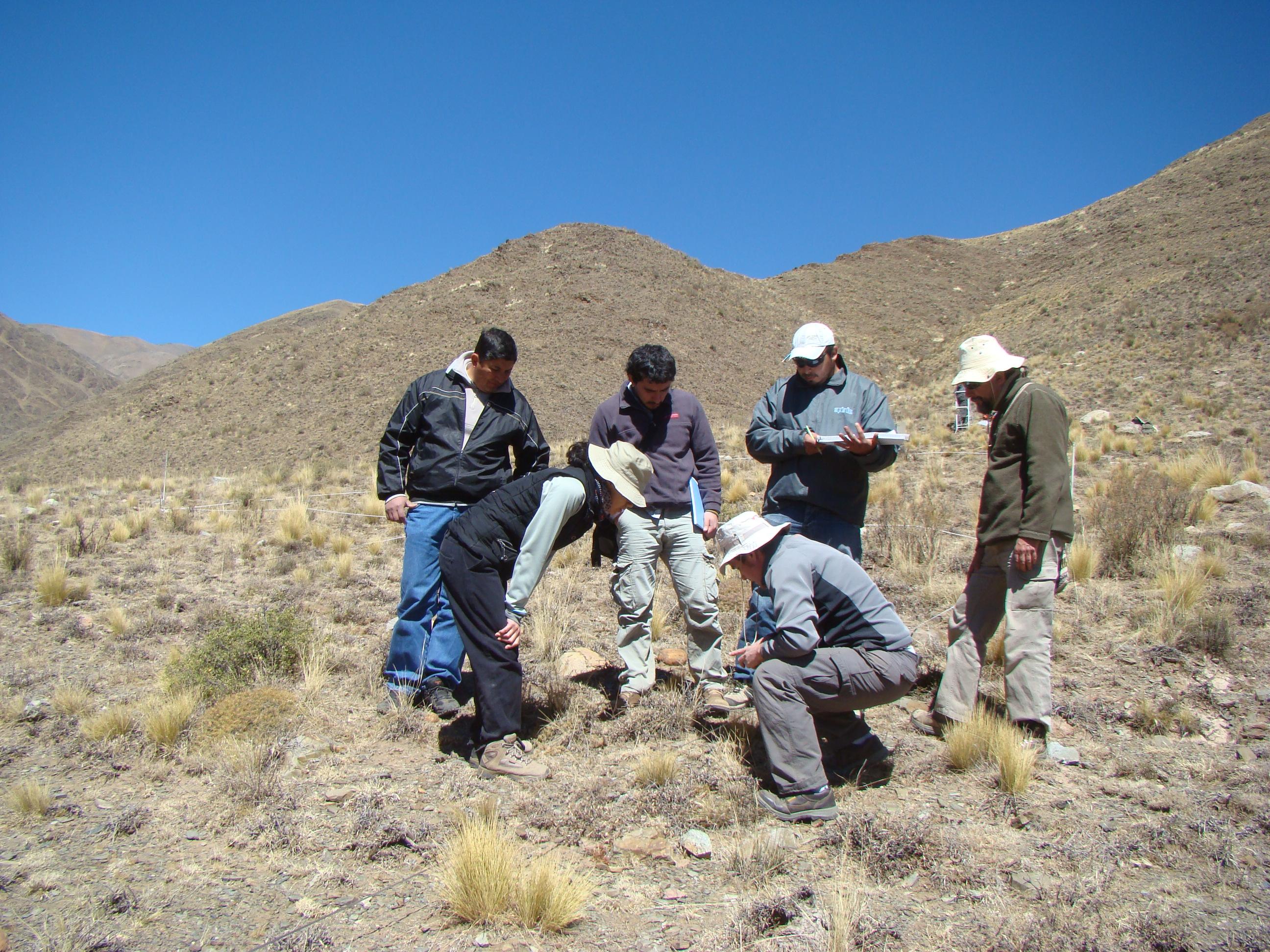 Leonor Deis desarrolla un estudio para saber cómo responden las plantas a los cambios de temperatura.