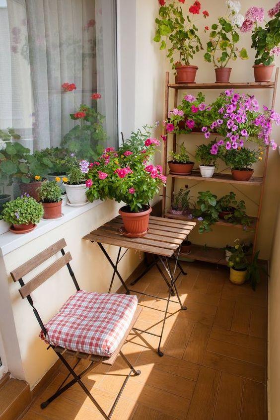 Los malvones y rosales son especies dotadas de color, que aportan un estilo vintage al lugar.