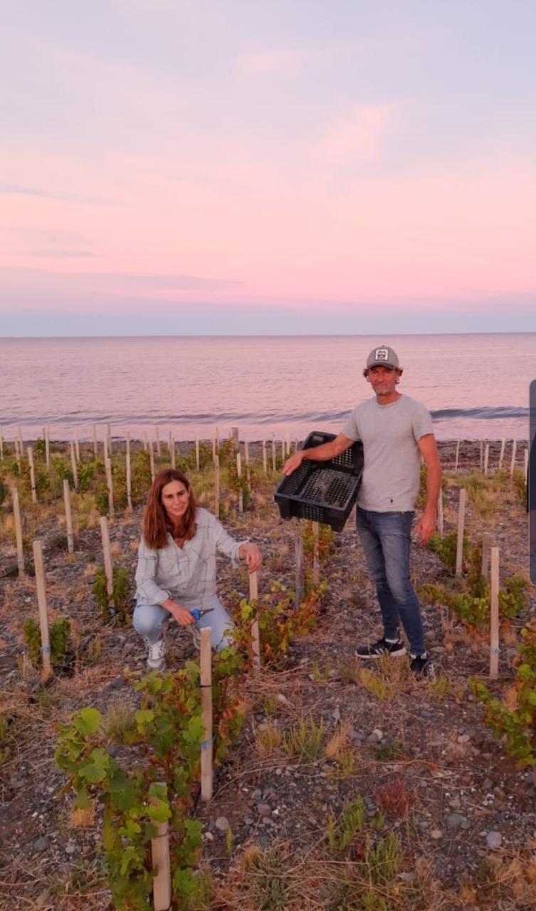 Matías Michelini y su esposa Cecilia en el viñedo que cultivan en la playa de Chubut.