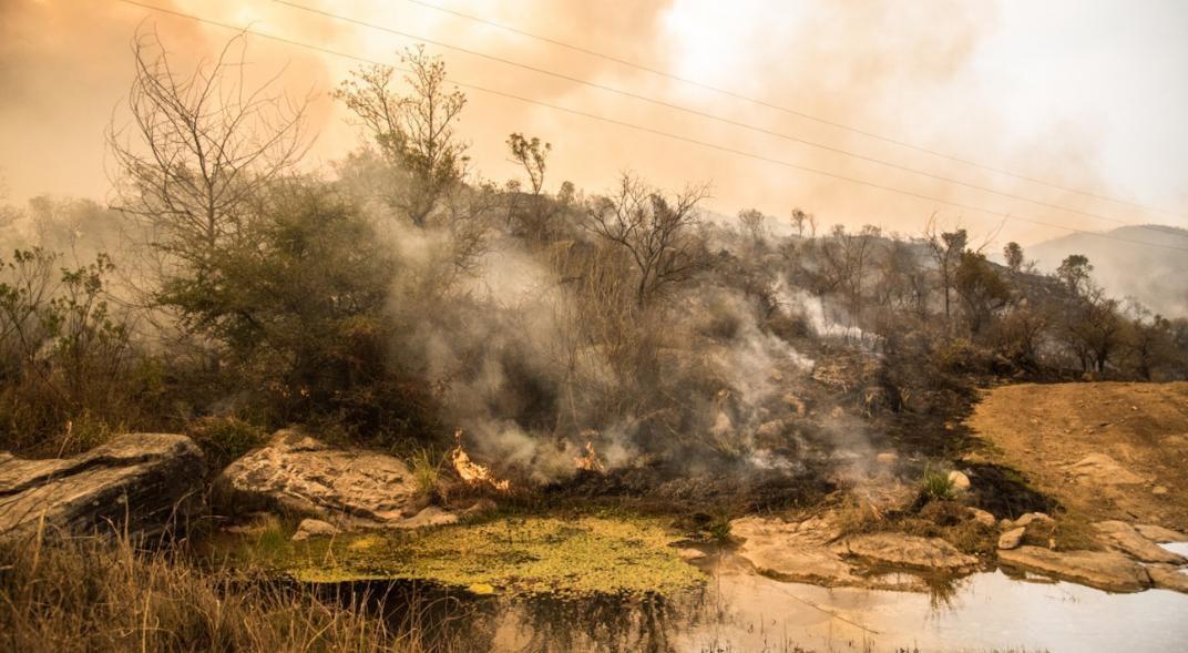Incendios en Córdoba -