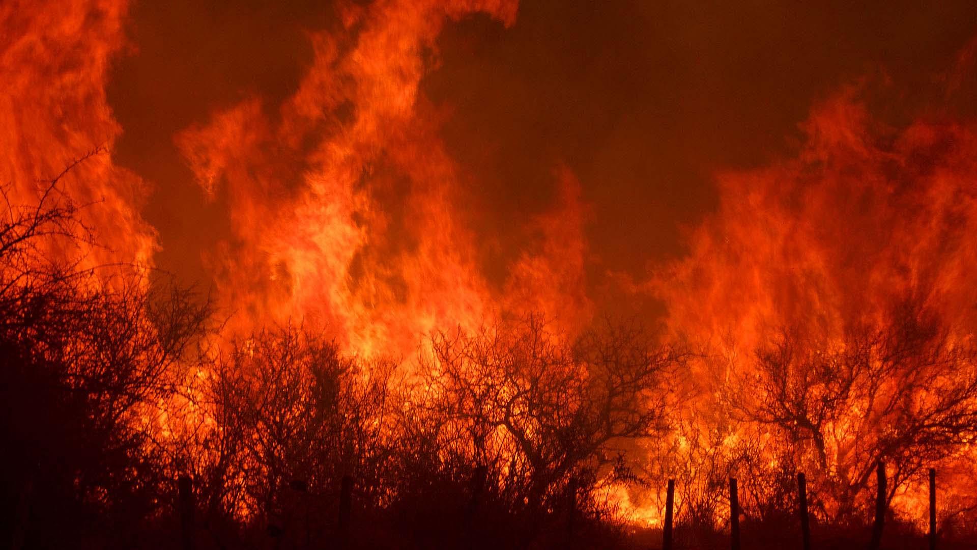 Otra imagen icónica de 2020: los incendios intencionales. Córdoba, con 326 mil hectáreas de pastizales y montes nativos afectadas, fue la provincia más castigada por la codicia del hombre, según el Servicio Nacional de Manejo del Fuego