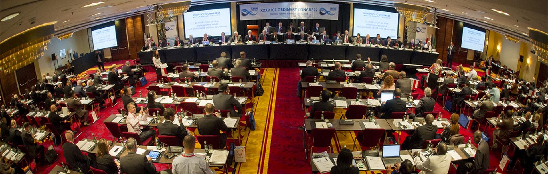 Congreso de la Federación  Internacional de Canotaje dentro de un mes en Roma