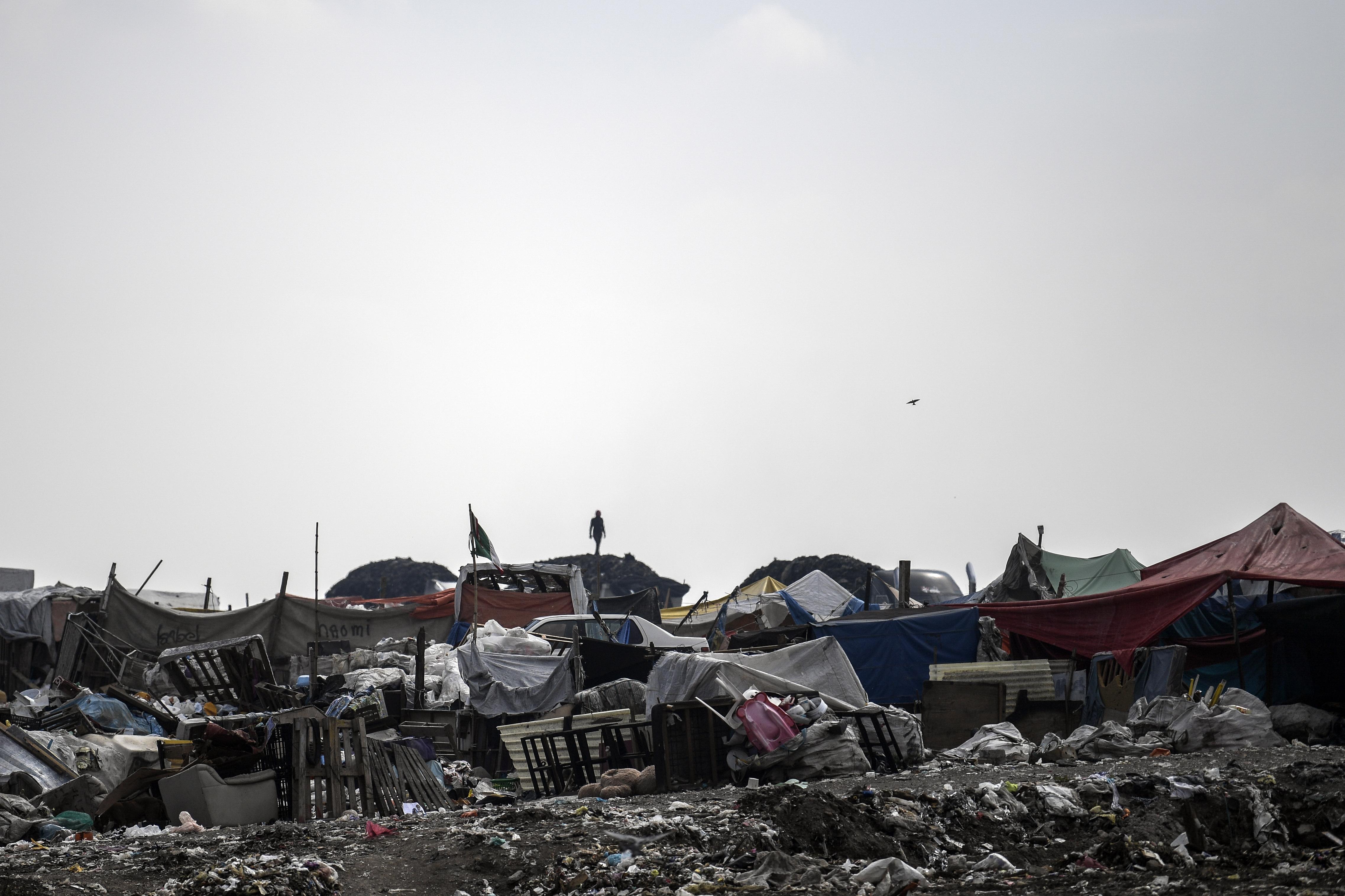 Un recolector clasifica la basura en el basurero