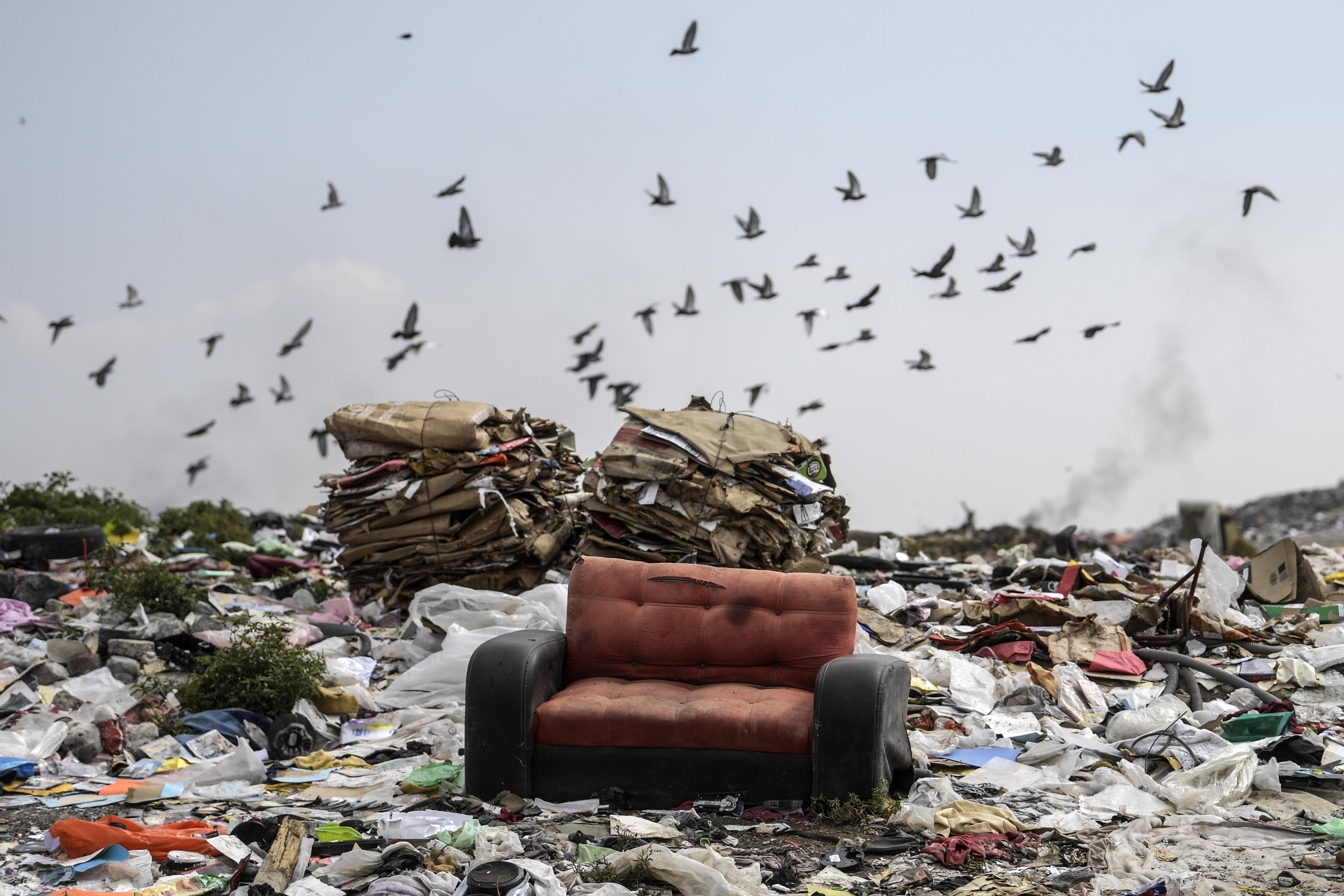 Vista de un sofá en el basurero