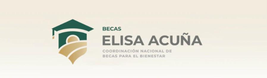 La beca está específicamente dirigida para los estudiantes de educación media superior con distintas características (Foto: Captura de Pantalla: Gobierno de México)