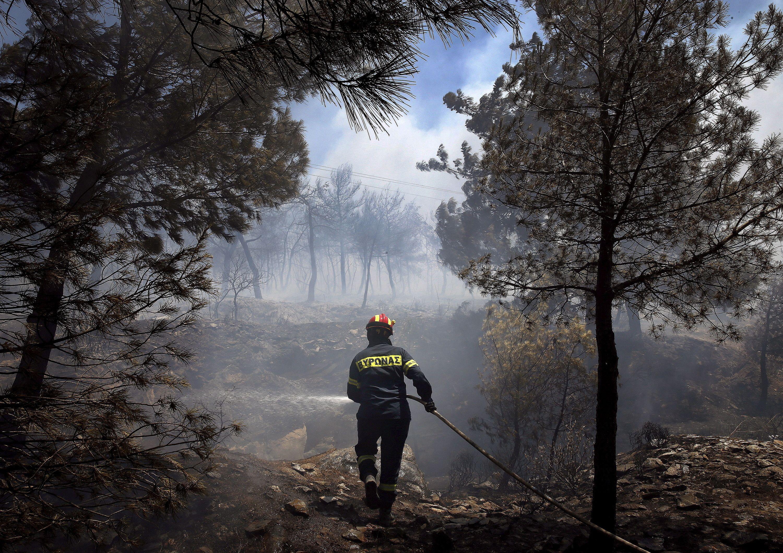 Los devastadores incendios que arrasan Grecia y Turquía comienzan a reducirse - Infobae