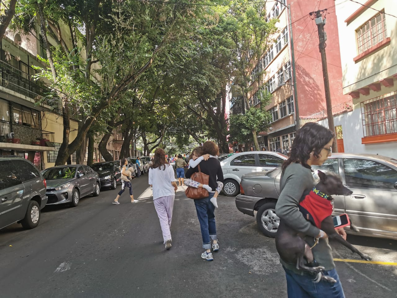 Foto: Infobae México.