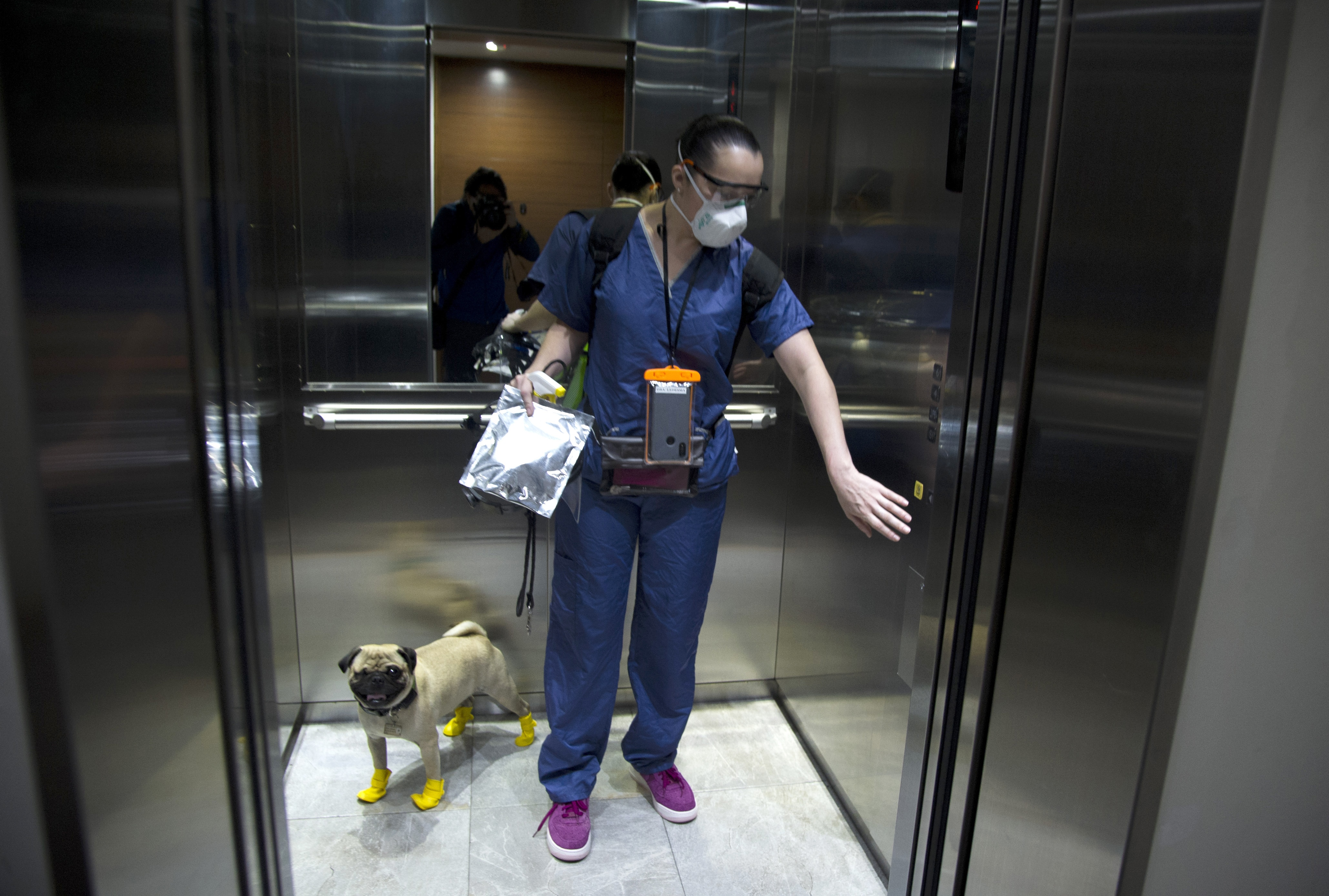 La psicóloga y neuropsicóloga Lucia Ledesma Torres y su perro Harley, también conocido como El Tuerto, usan un ascensor en la Ciudad de México. (Foto: Claudio Cruz/AFP)