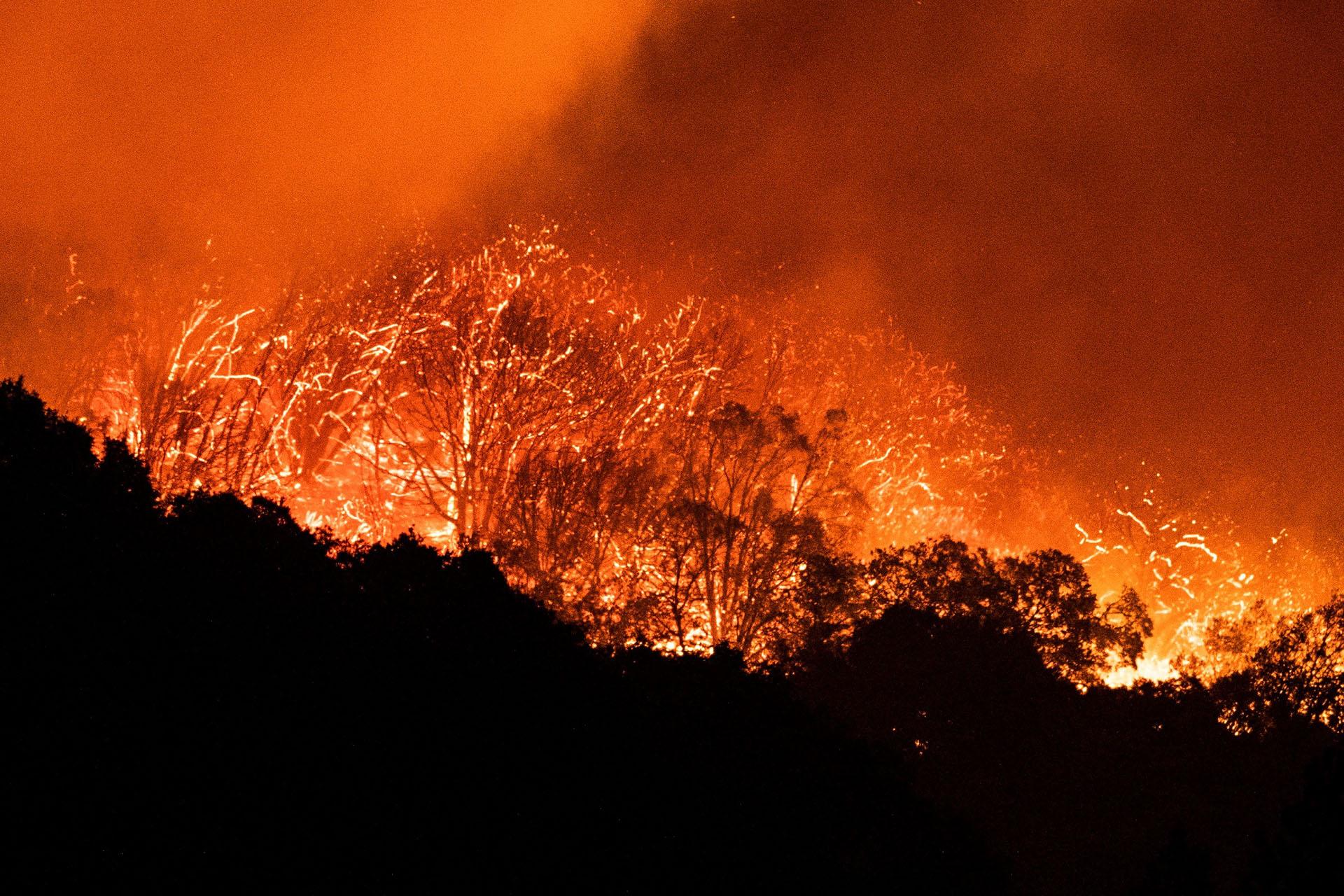 Vista del fuego declarado en Shaver Lake en el bosque nacional de Sierra en California, Estados Unidos este martes. EFE/ Etienne Laurent