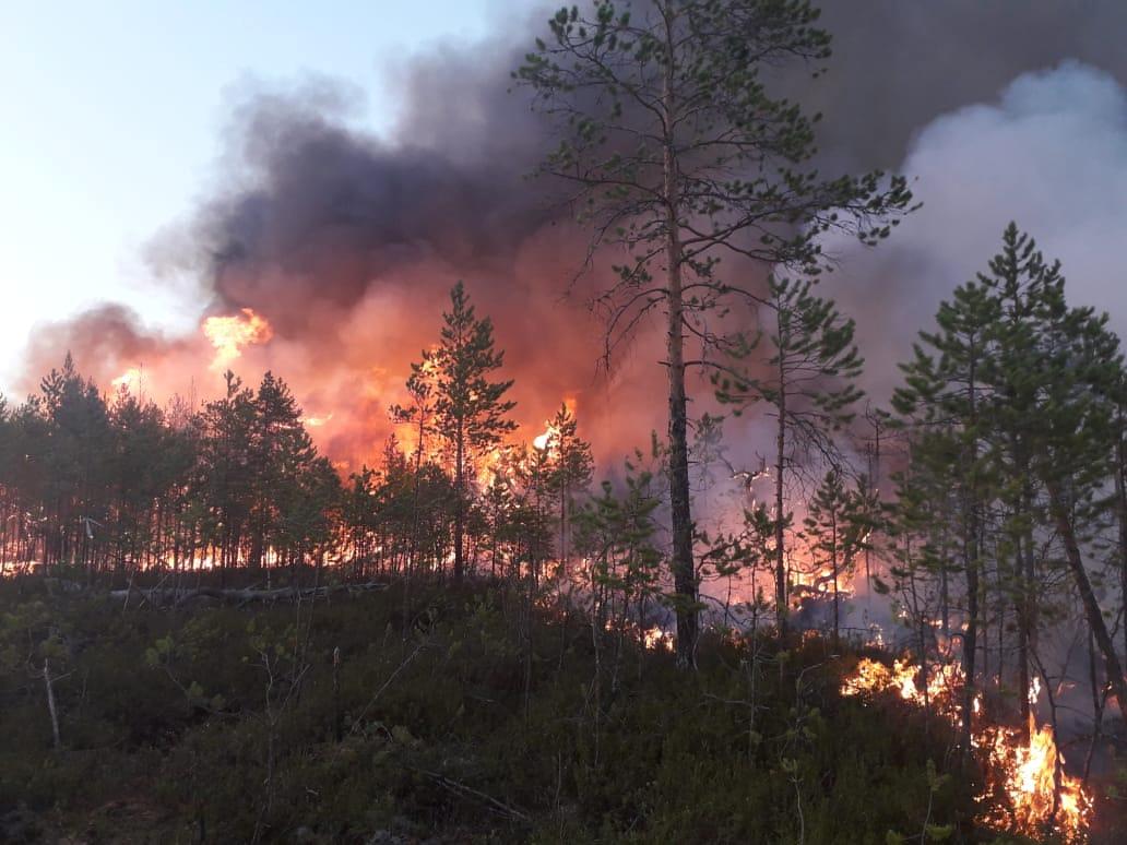 Un incendio en la región de Khanty-Mansi (Servicio Aéreo Ruso de protección forestal via REUTERS)