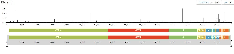 Nextstrain incluye un dato de todas las mutaciones identificadas en los 27 mil genomas secuenciados a la fecha.
