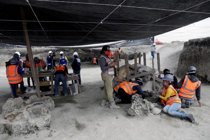 En el cercano municipio de Tultepec existe un museo dedicado a los restos de estos gigantes descubiertos en la zona; en noviembre pasado también fueron hallados los esqueletos de 14 mamuts.