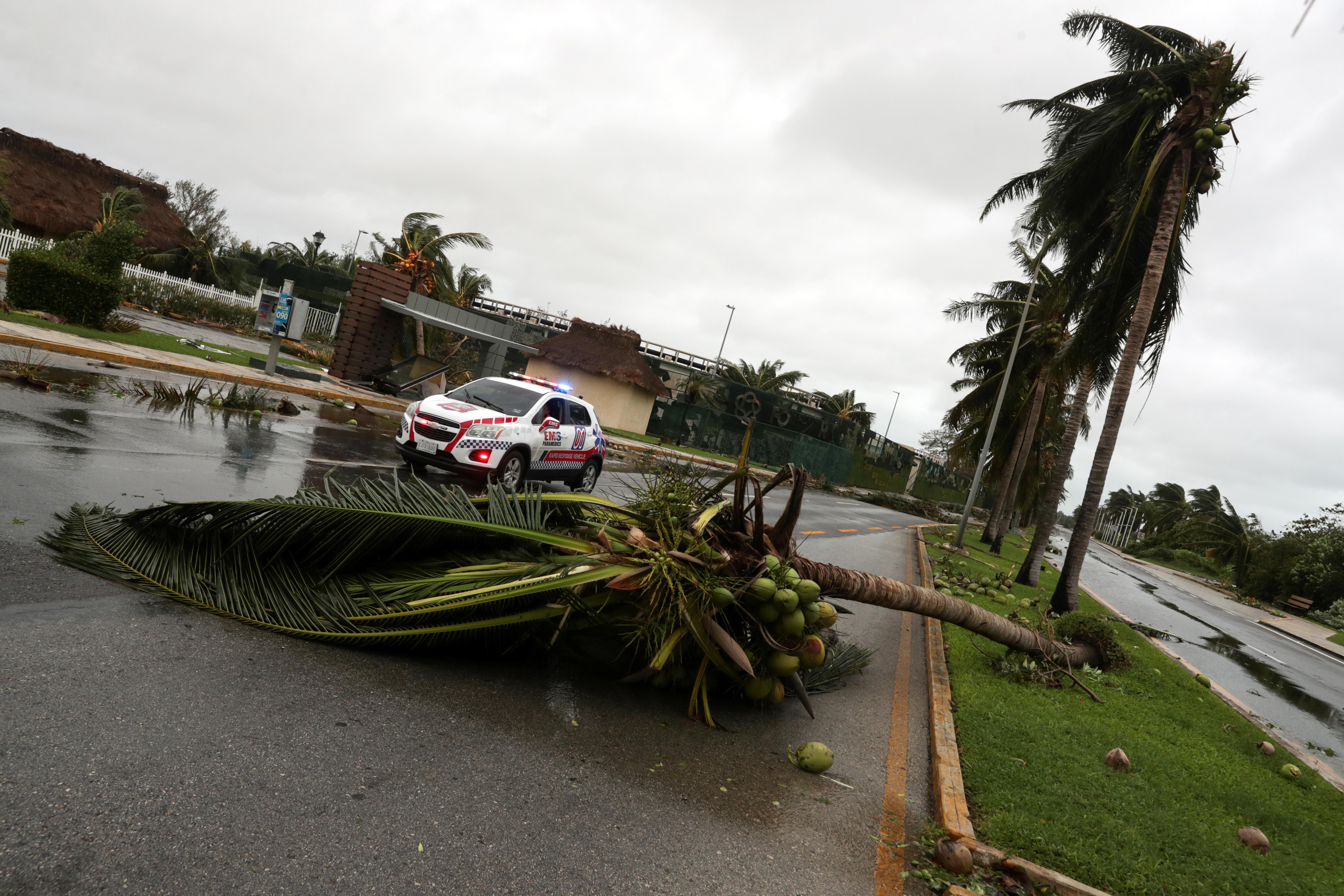 Se ve una palmera caída frente a un vehículo de respuesta rápida después del huracán Delta, en Cancún, en el estado de Quintana Roo, México, el 7 de octubre de 2020.