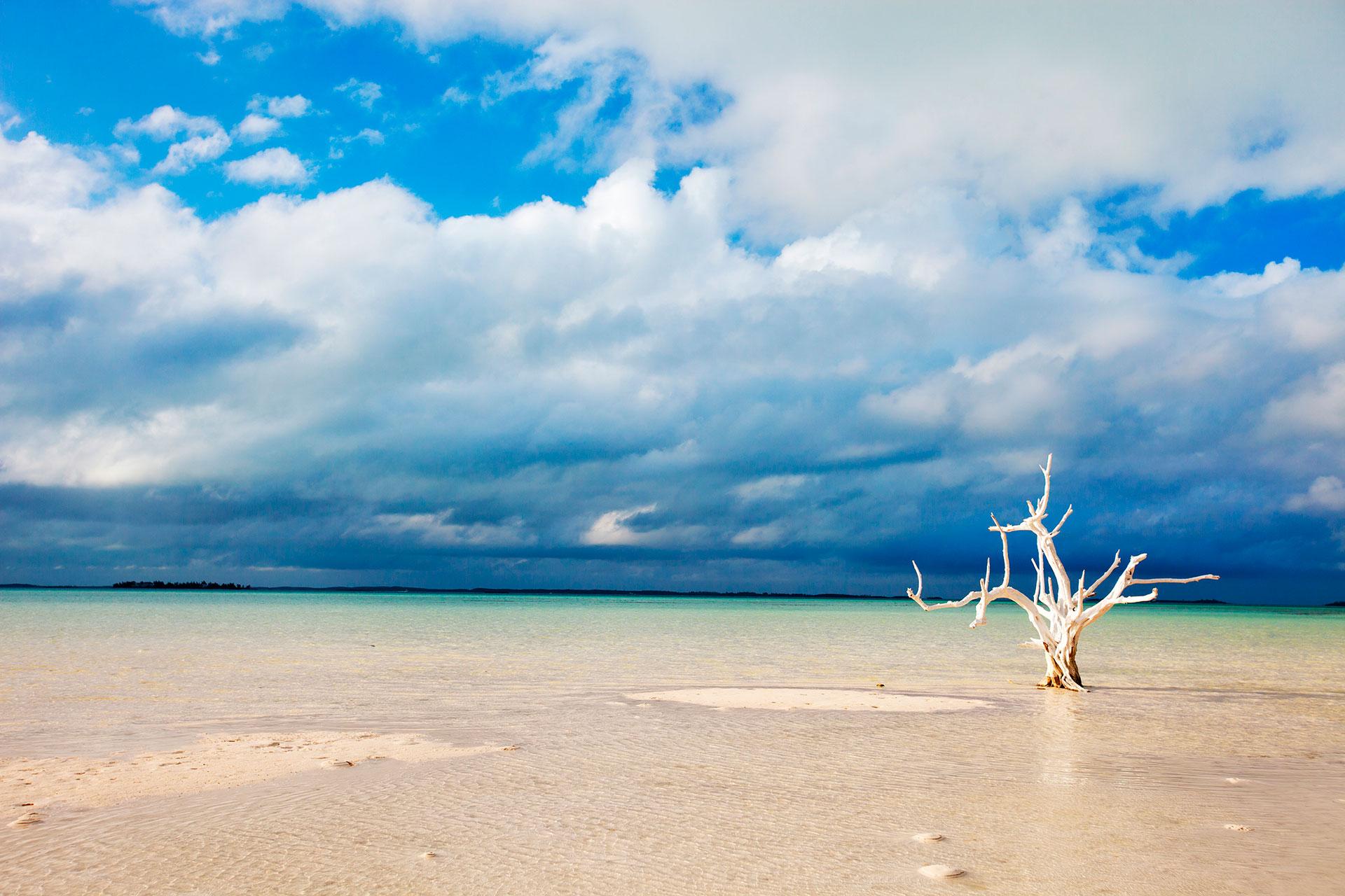 Cuatro palabras: playa de arena rosa. Con más de tres millas de largo, la icónica y colorida playa de Harbour Island está coloreada gracias a las conchas rosadas y rojas de pequeños organismos que habitan los corales, que han sido aplastados por las olas y arrastrados a la costa. Pero, como ocurre con la mayoría de las islas de esta lista, hay más que hacer en la playa que simplemente tomar el sol. Ciertas áreas están abiertas a los jinetes, mientras que el agua está llena de arrecifes de coral periféricos que adorarán a los buceadores