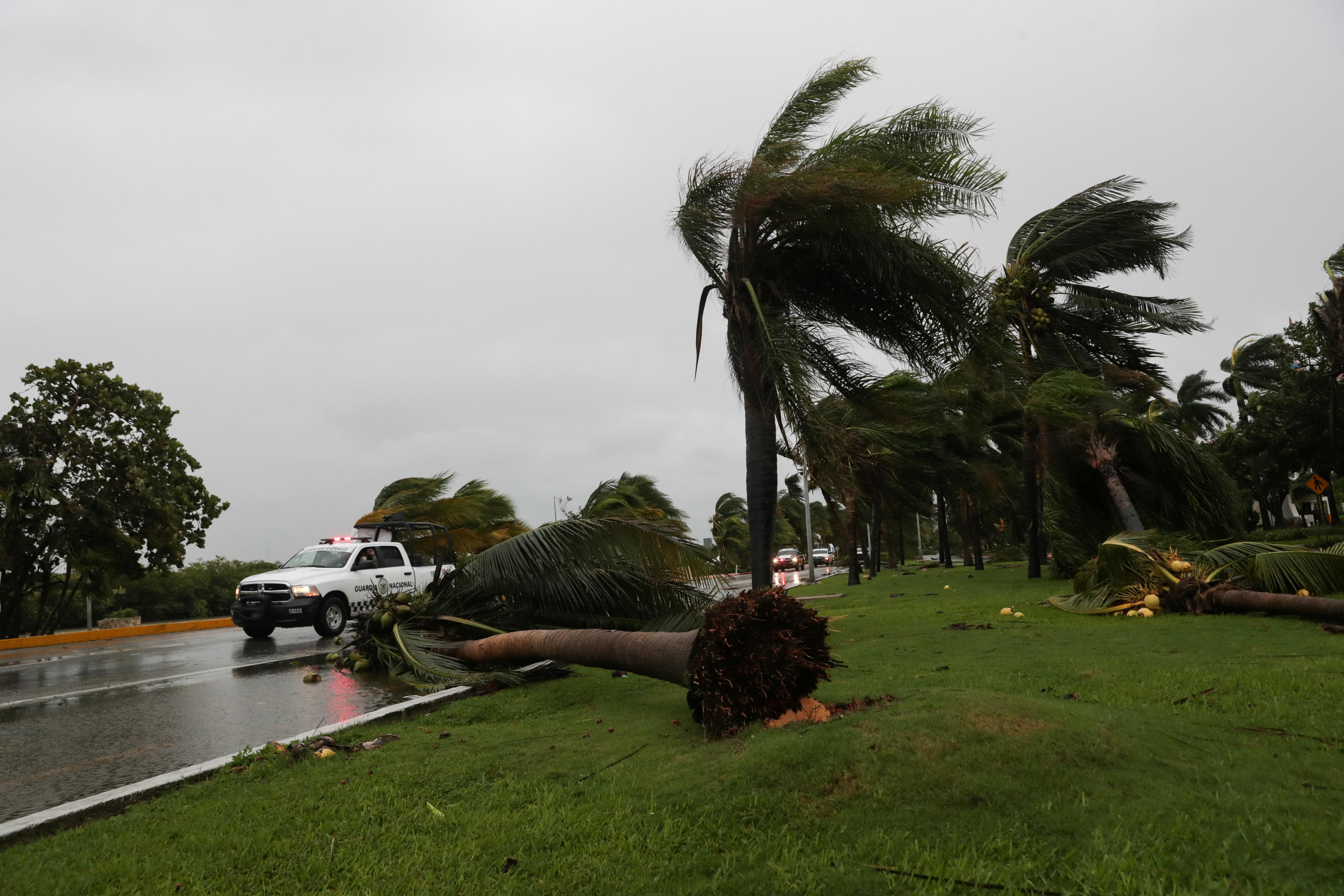 Palmeras ondean y caen tras el paso del huracán Delta, en el estado de Quintana Roo, en Cancún, México, 7 de octubre de 2020.