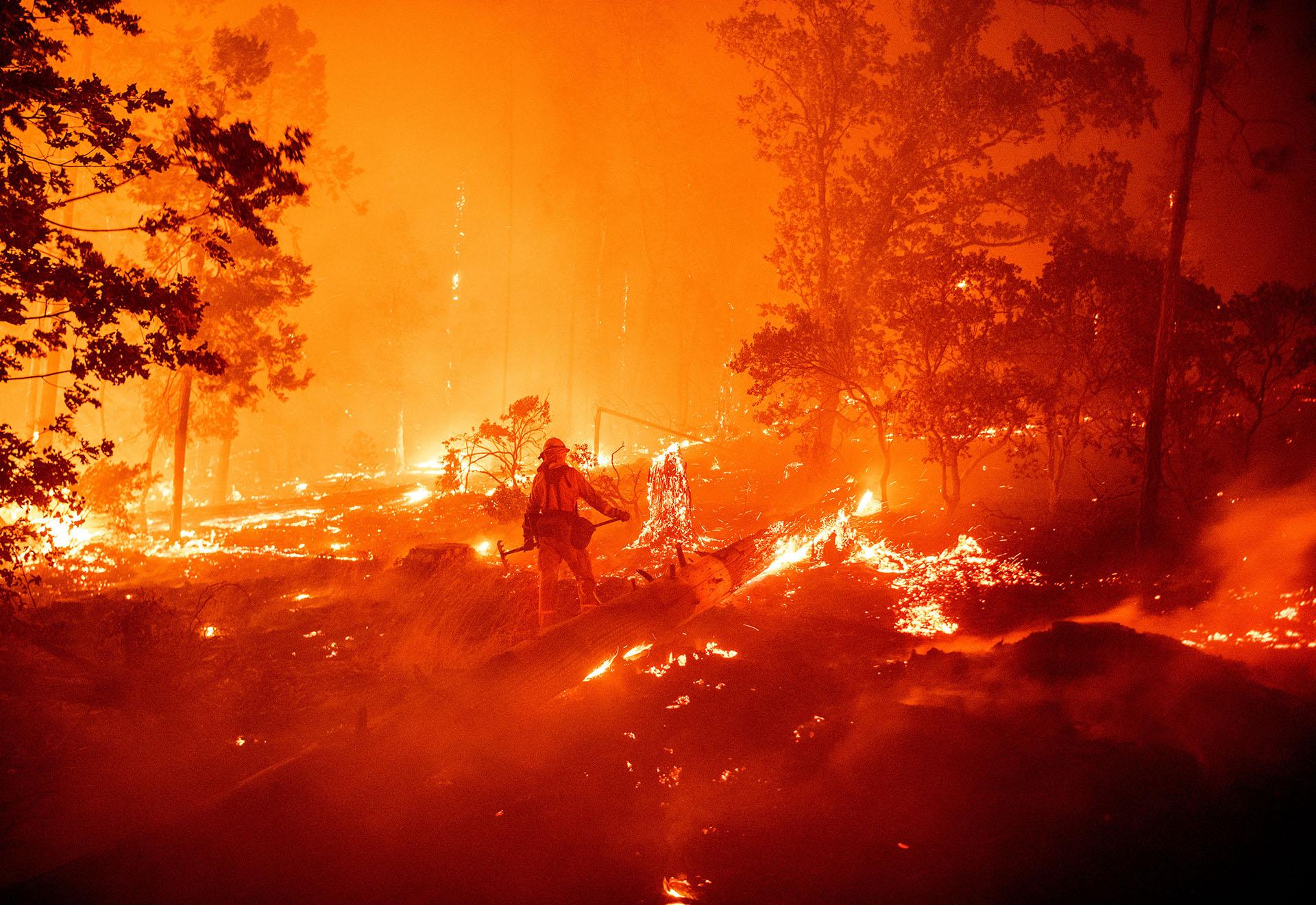 El incendio más devastador, que se inició el viernes, es el fuego de Creek -como ha sido bautizado por el Departamento Forestal y de Protección contra Incendios de California (Cal Fire) - ya ha quemado 32.000 hectáreas y las diez dotaciones de bomberos que trabajan en él aún no han logrado ningún avance en las tareas de contención. (JOSH EDELSON / AFP)
