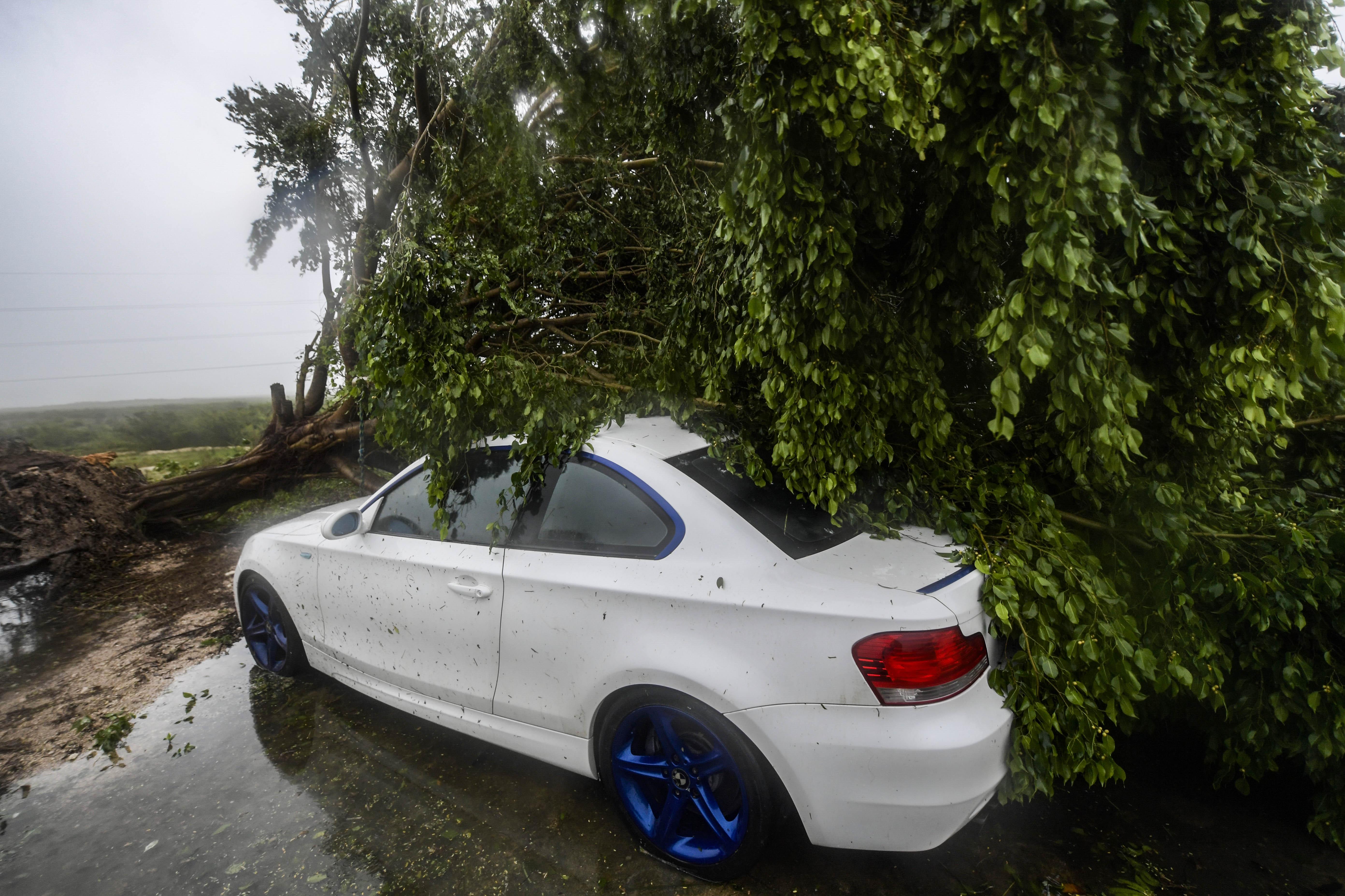 Un automóvil está cubierto debajo de un árbol caído después del paso del huracán Delta, en Cancún, estado de Quintana Roo, México, el 7 de octubre de 2020.