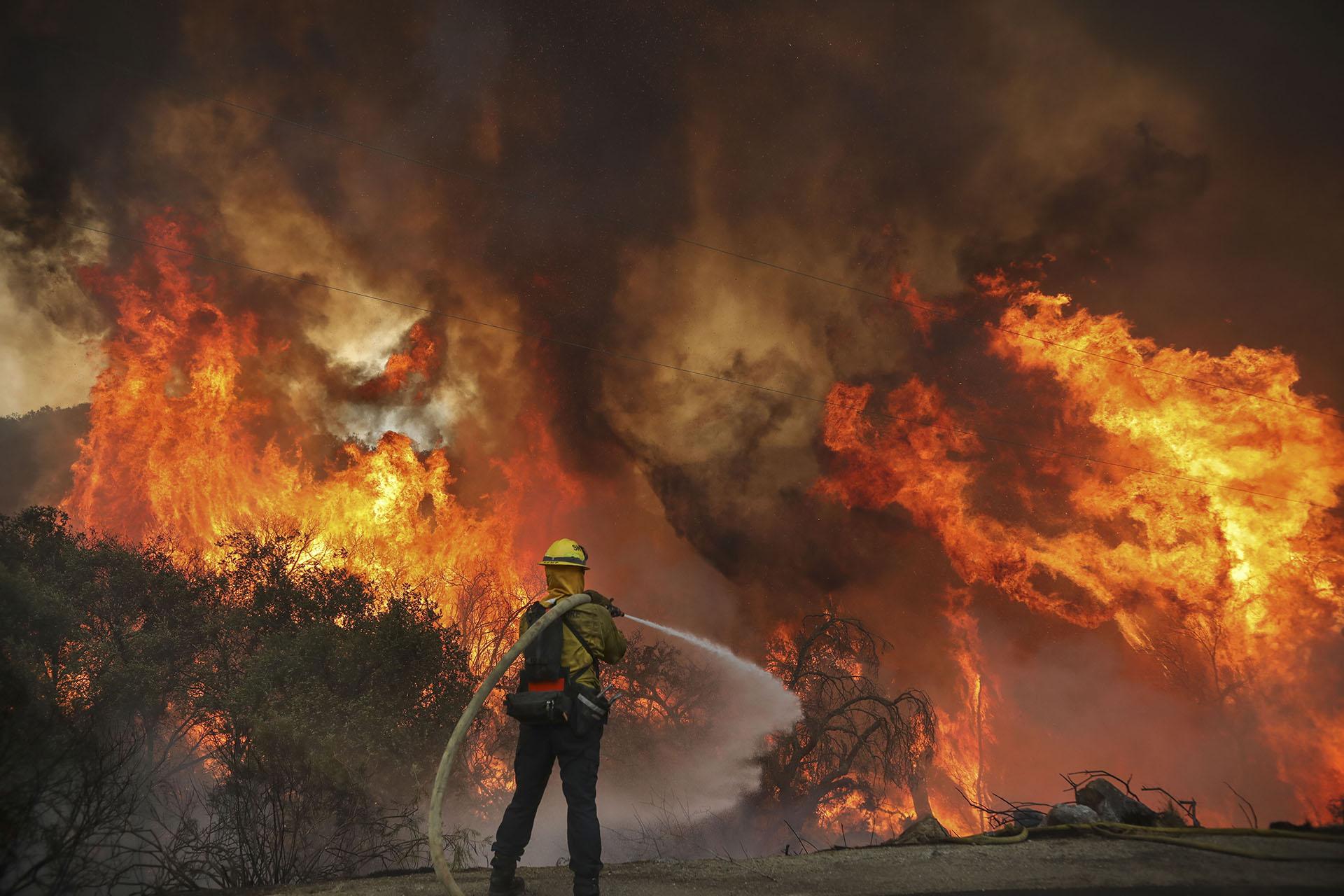 Más de 14.100 bomberos estaban luchando contra 24 incendios forestales diferentes hasta el lunes por la tarde, dijo Cal Fire en un tuit (SANDY HUFFAKER / AFP)