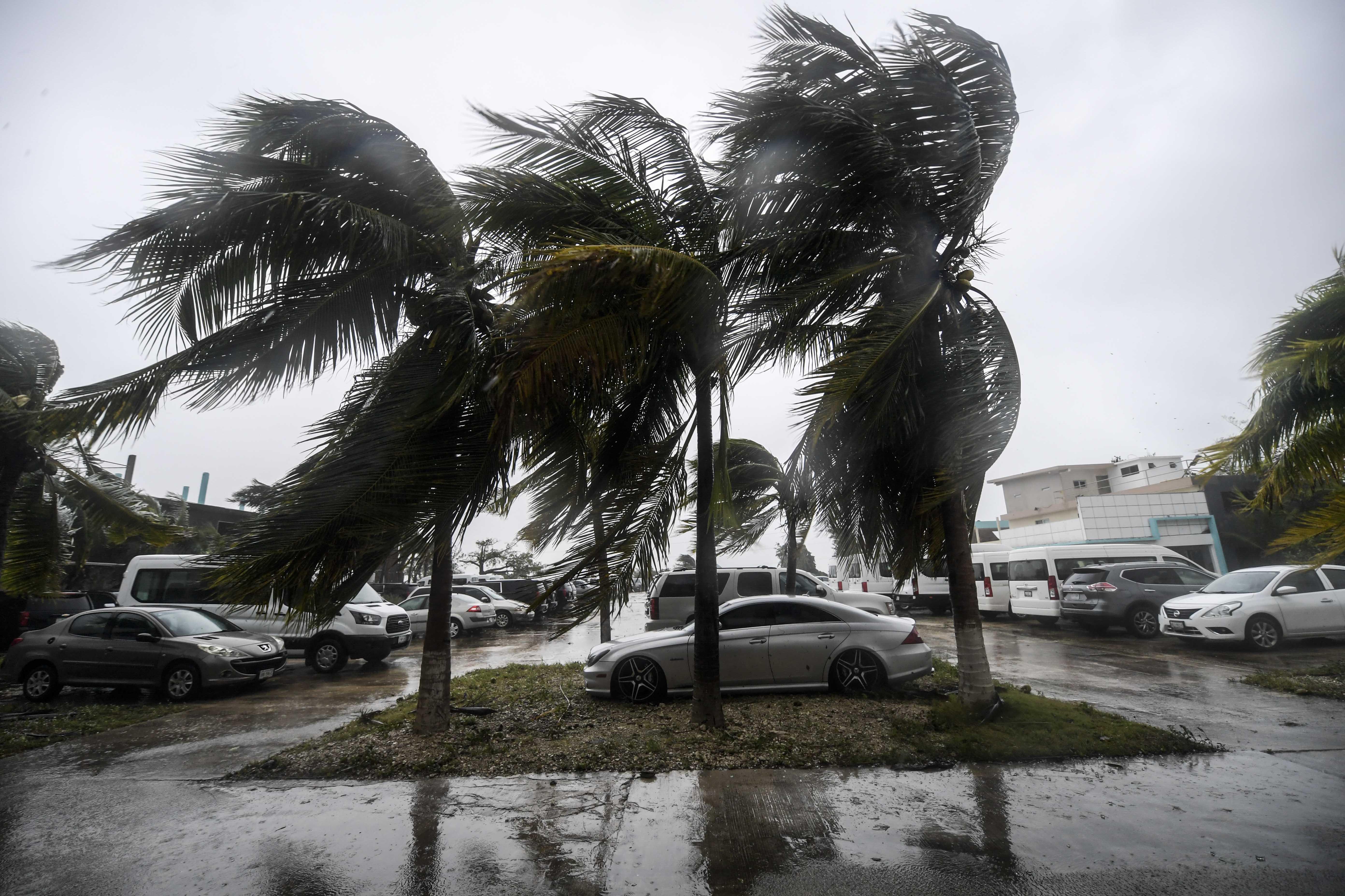 Los vientos azotan palmeras después del paso del huracán Delta, en Cancún, estado de Quintana Roo, México, el 7 de octubre de 2020.